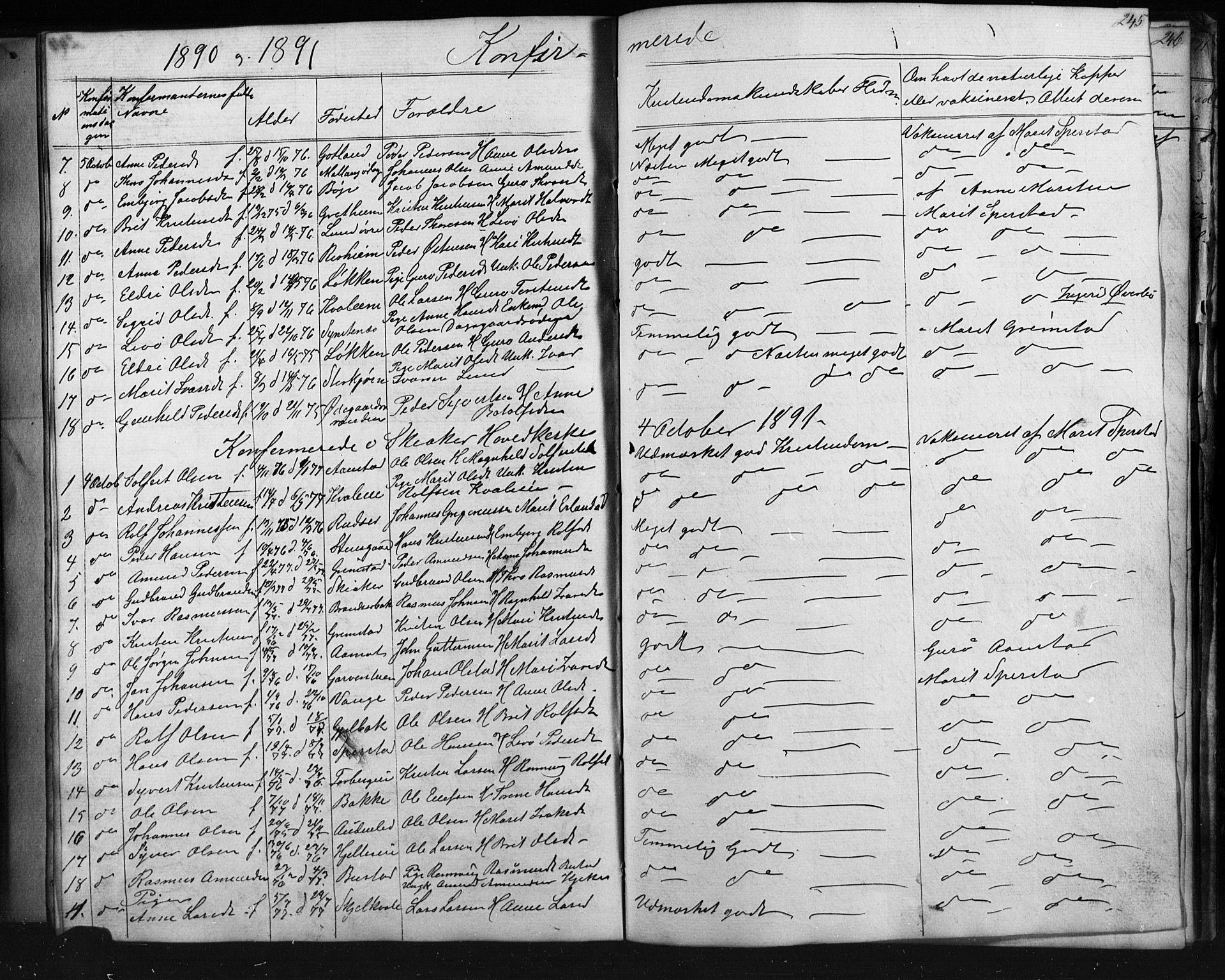 SAH, Skjåk prestekontor, Klokkerbok nr. 1, 1865-1893, s. 245
