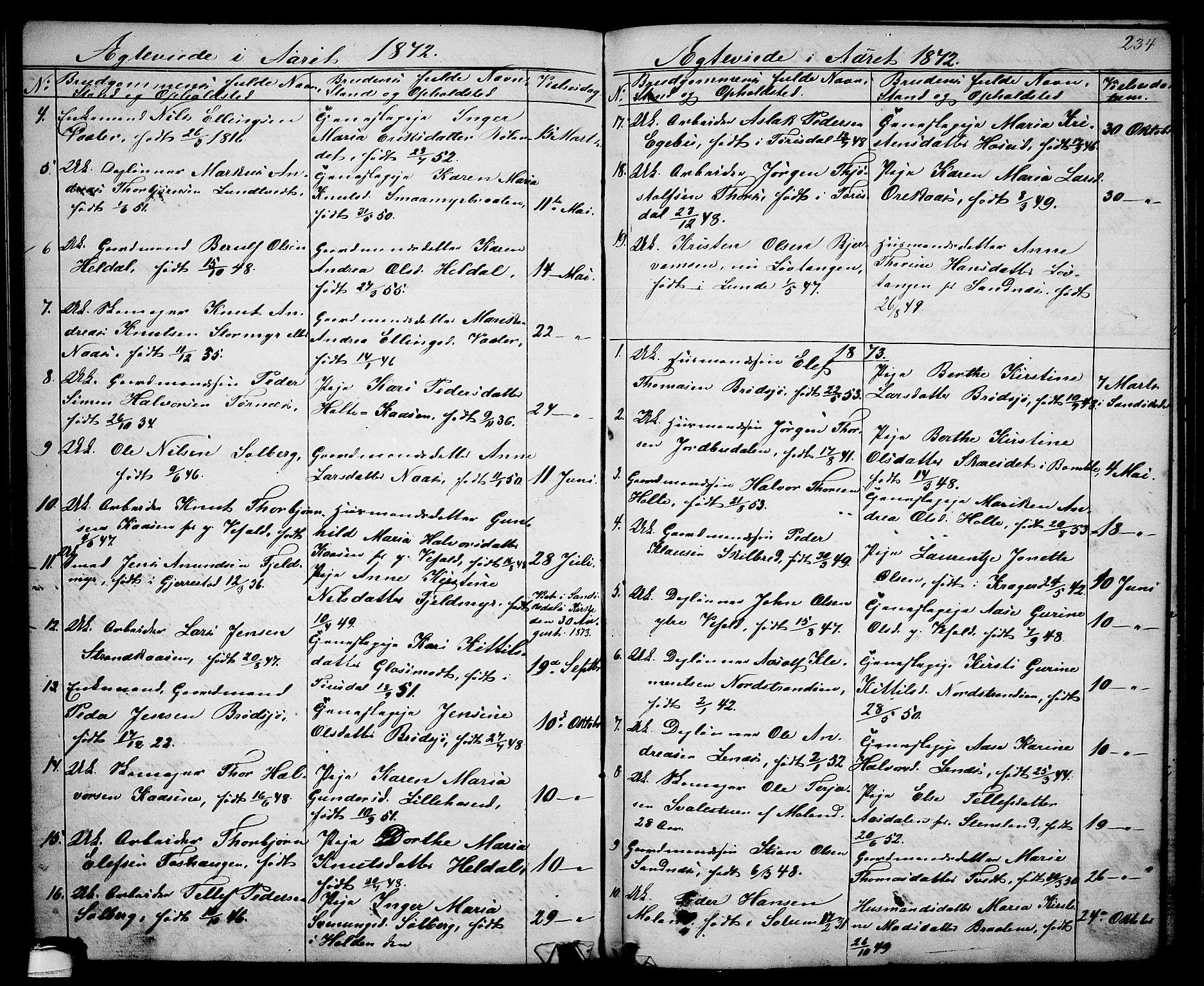 SAKO, Drangedal kirkebøker, G/Ga/L0002: Klokkerbok nr. I 2, 1856-1887, s. 234