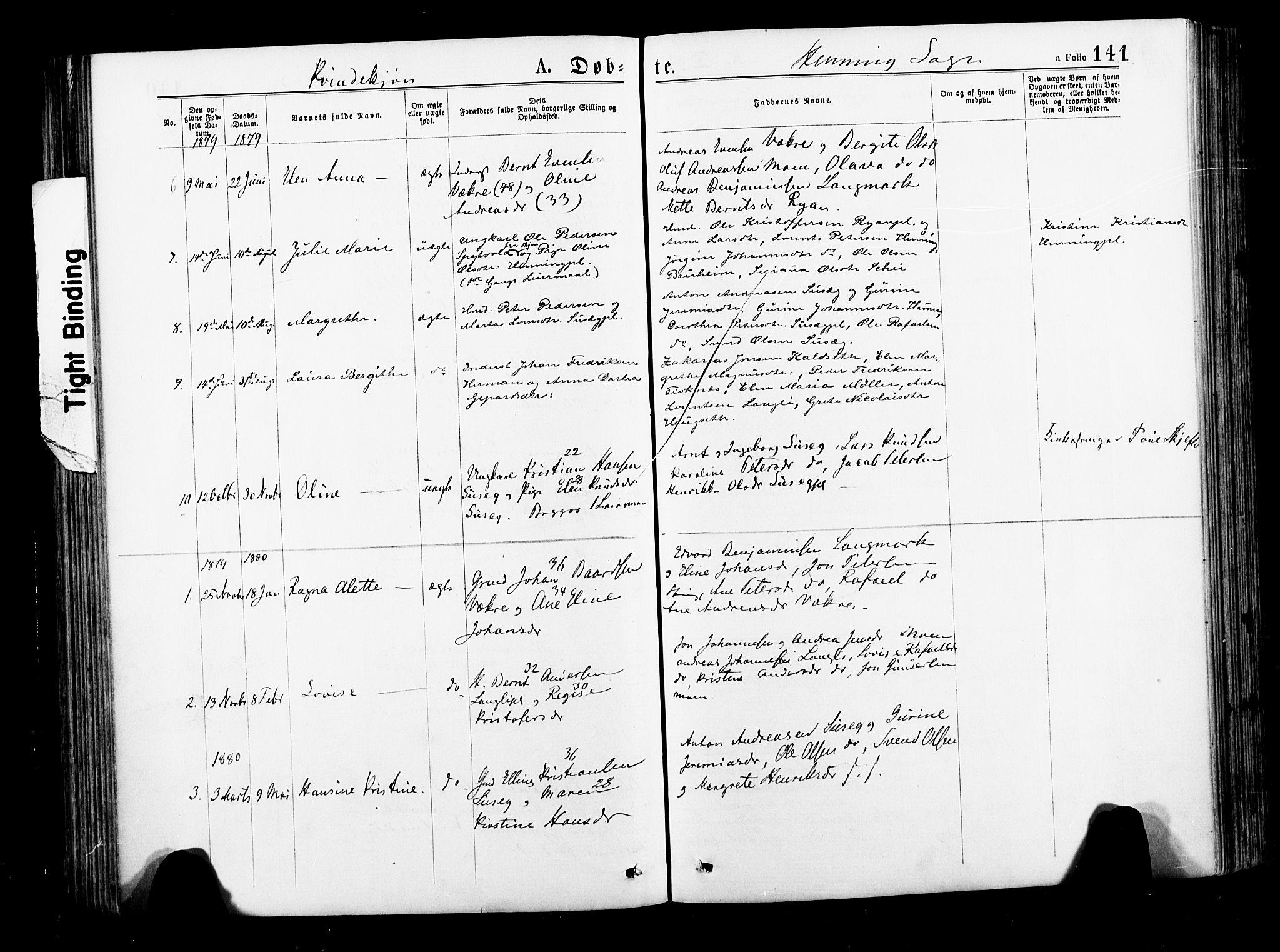 SAT, Ministerialprotokoller, klokkerbøker og fødselsregistre - Nord-Trøndelag, 735/L0348: Ministerialbok nr. 735A09 /3, 1873-1883, s. 141