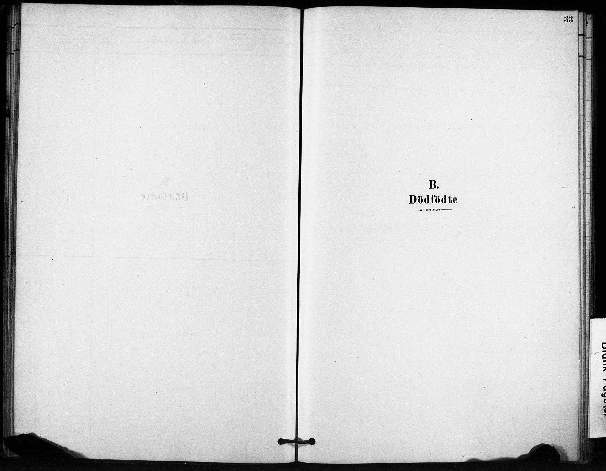 SAT, Ministerialprotokoller, klokkerbøker og fødselsregistre - Sør-Trøndelag, 666/L0786: Ministerialbok nr. 666A04, 1878-1895, s. 33