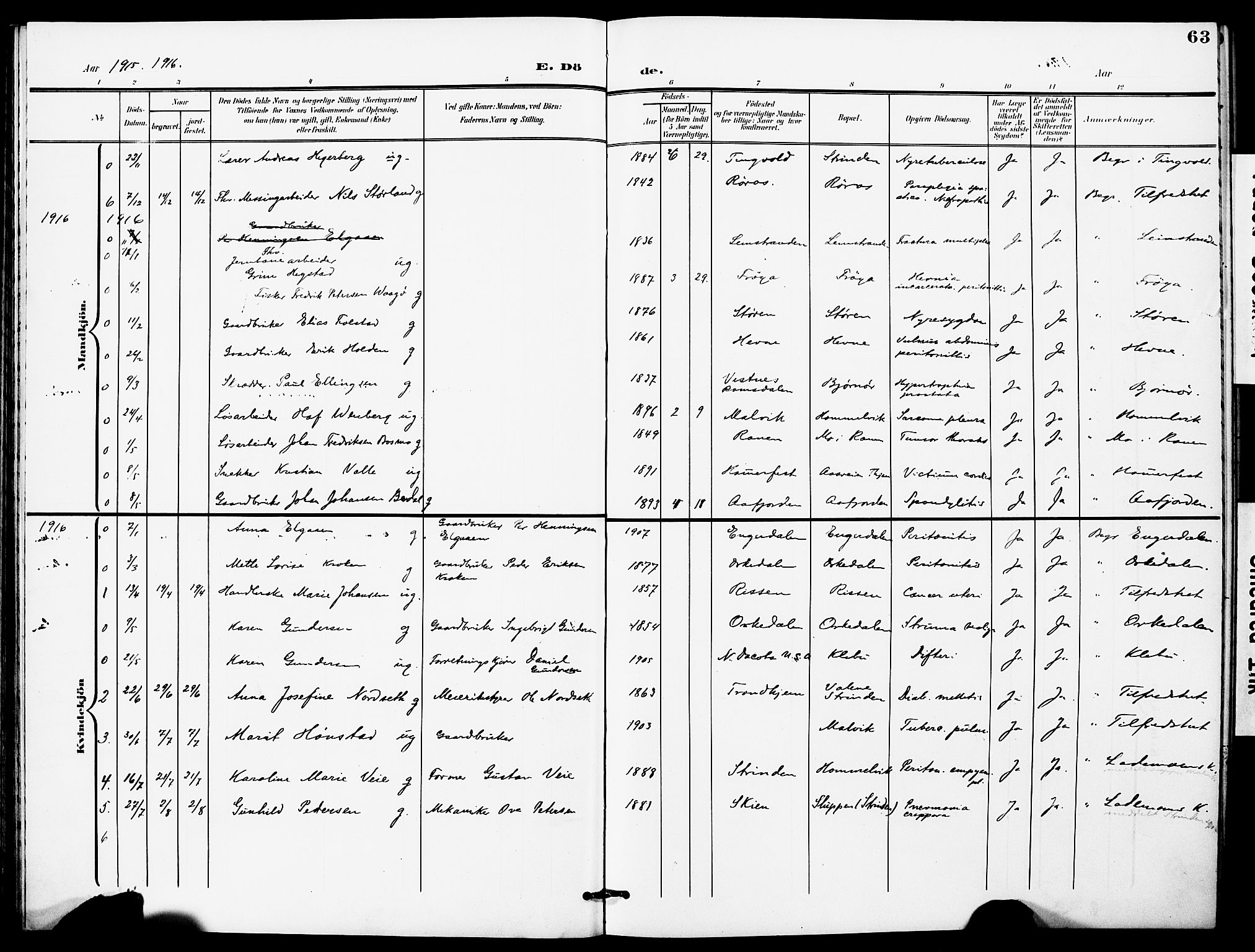 SAT, Ministerialprotokoller, klokkerbøker og fødselsregistre - Sør-Trøndelag, 628/L0483: Ministerialbok nr. 628A01, 1902-1920, s. 63