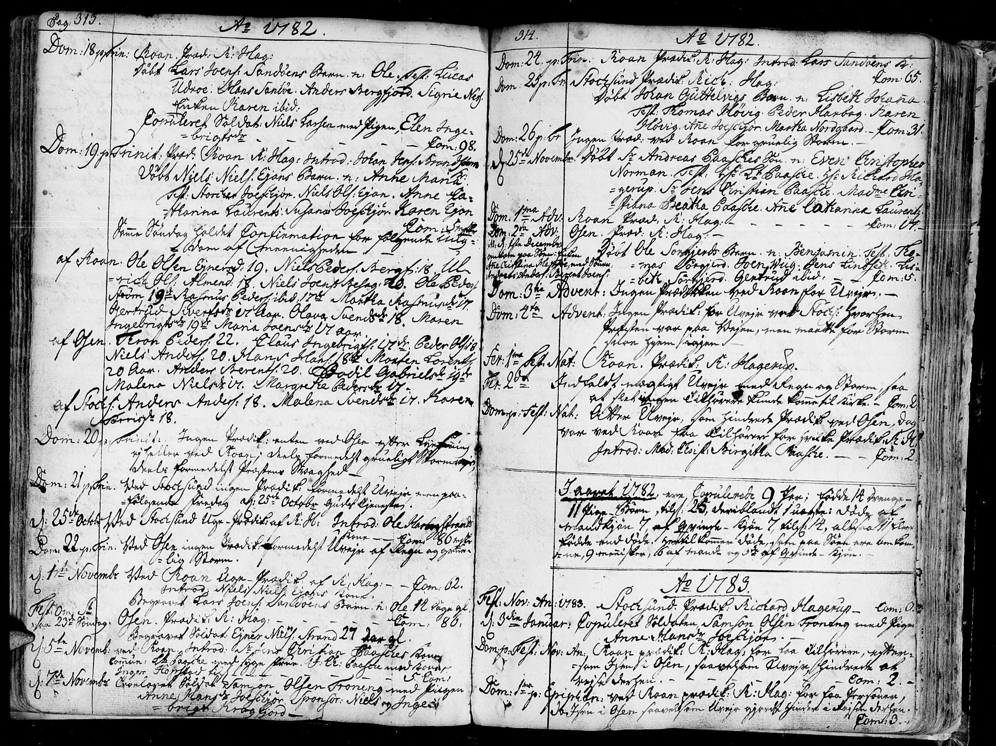 SAT, Ministerialprotokoller, klokkerbøker og fødselsregistre - Sør-Trøndelag, 657/L0700: Ministerialbok nr. 657A01, 1732-1801, s. 313-314