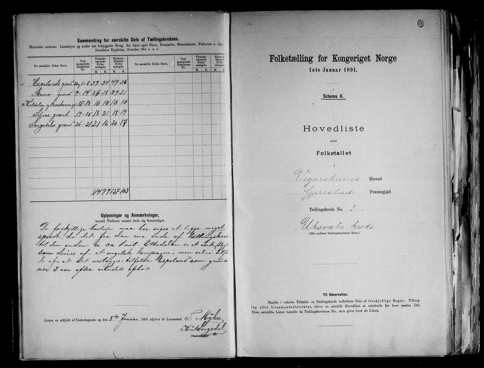 RA, Folketelling 1891 for 0912 Vegårshei herred, 1891, s. 9