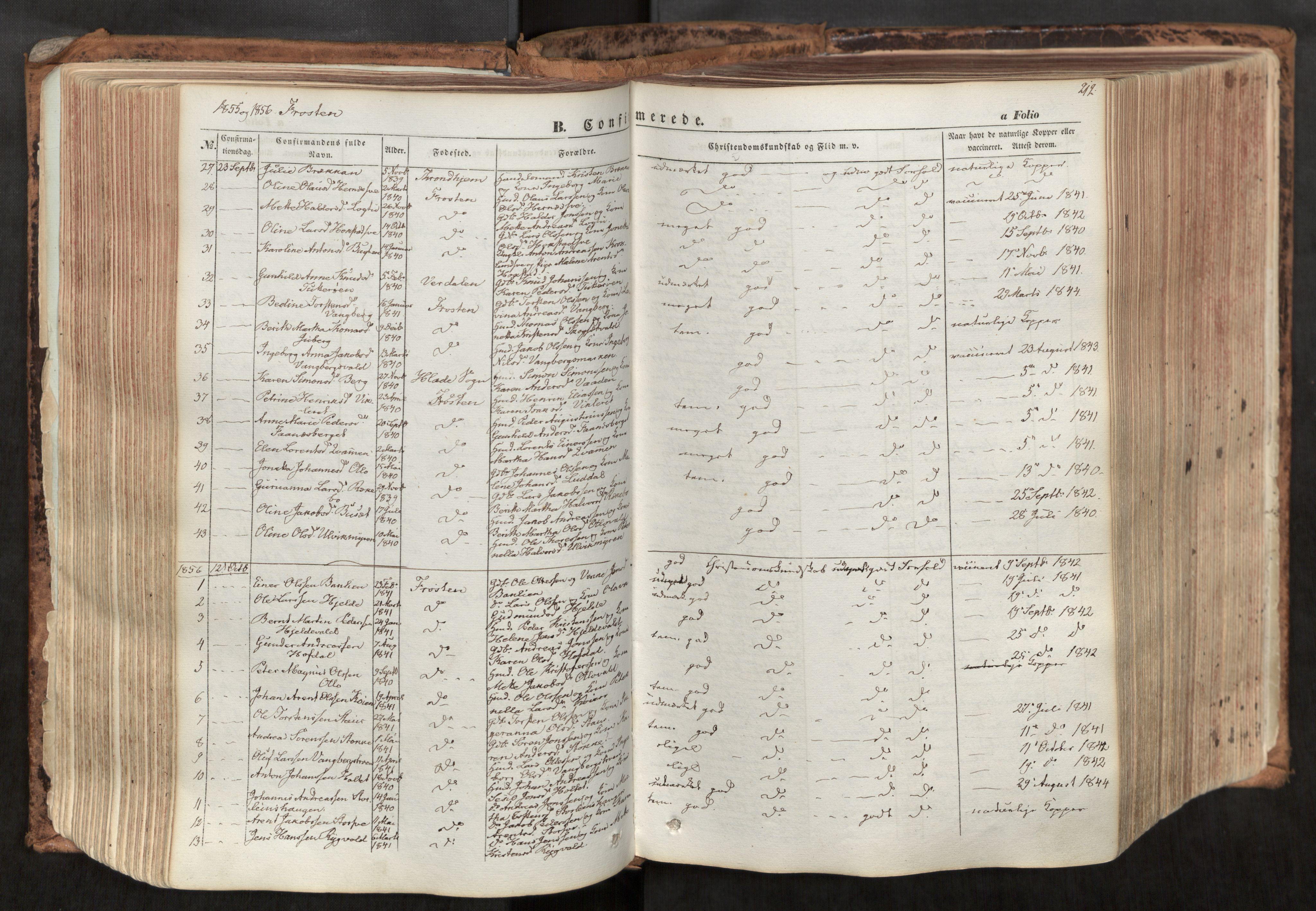 SAT, Ministerialprotokoller, klokkerbøker og fødselsregistre - Nord-Trøndelag, 713/L0116: Ministerialbok nr. 713A07, 1850-1877, s. 212