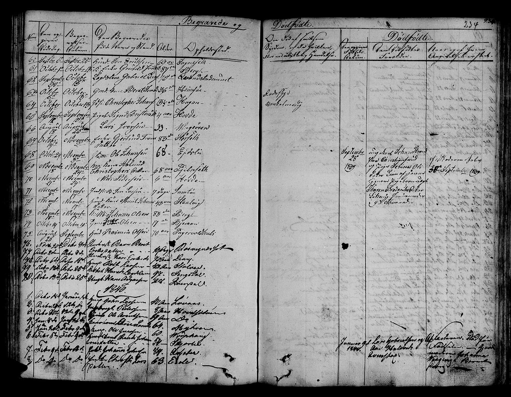 SAT, Ministerialprotokoller, klokkerbøker og fødselsregistre - Sør-Trøndelag, 630/L0492: Ministerialbok nr. 630A05, 1830-1840, s. 234