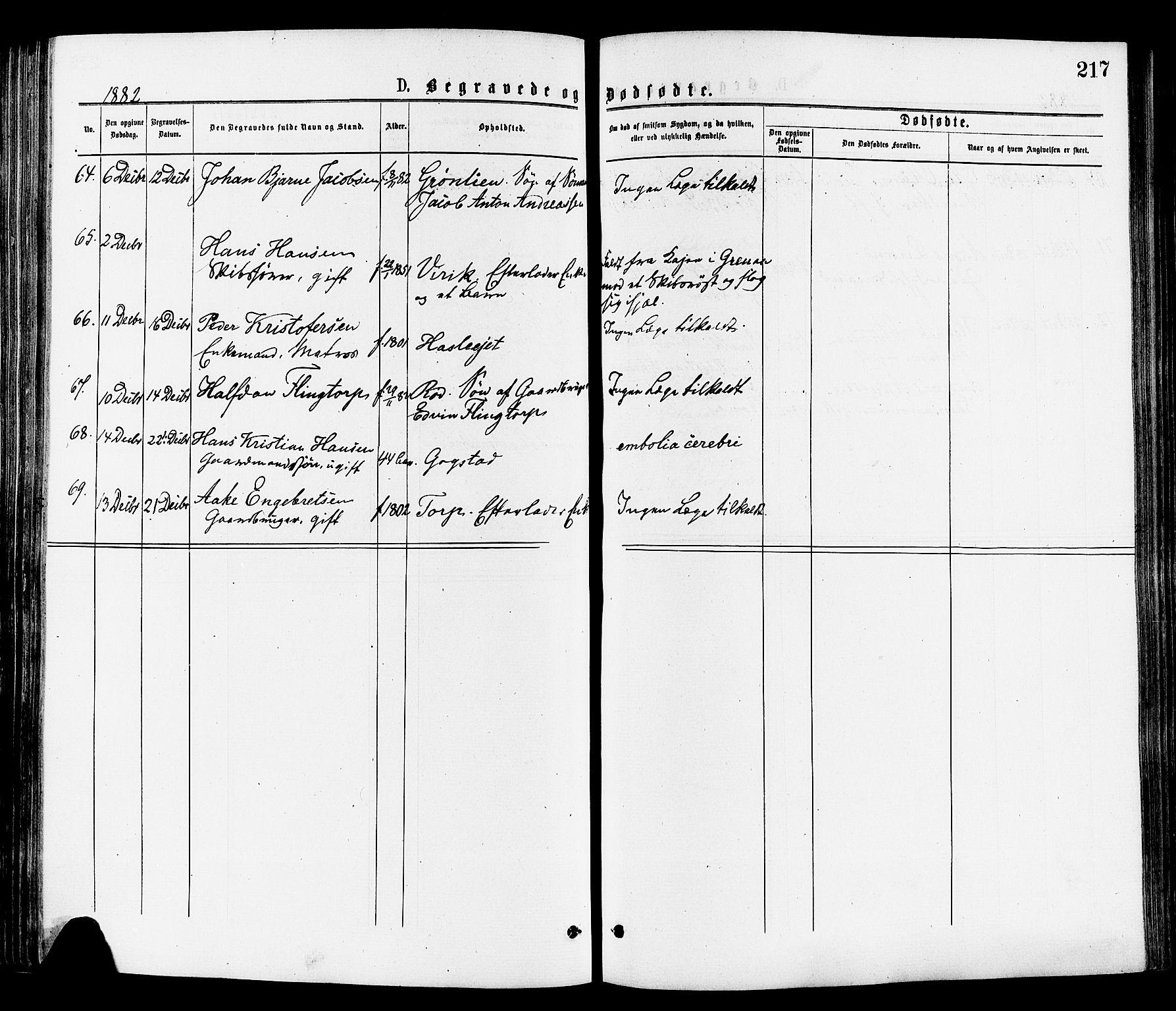 SAKO, Sandar kirkebøker, F/Fa/L0011: Ministerialbok nr. 11, 1872-1882, s. 217