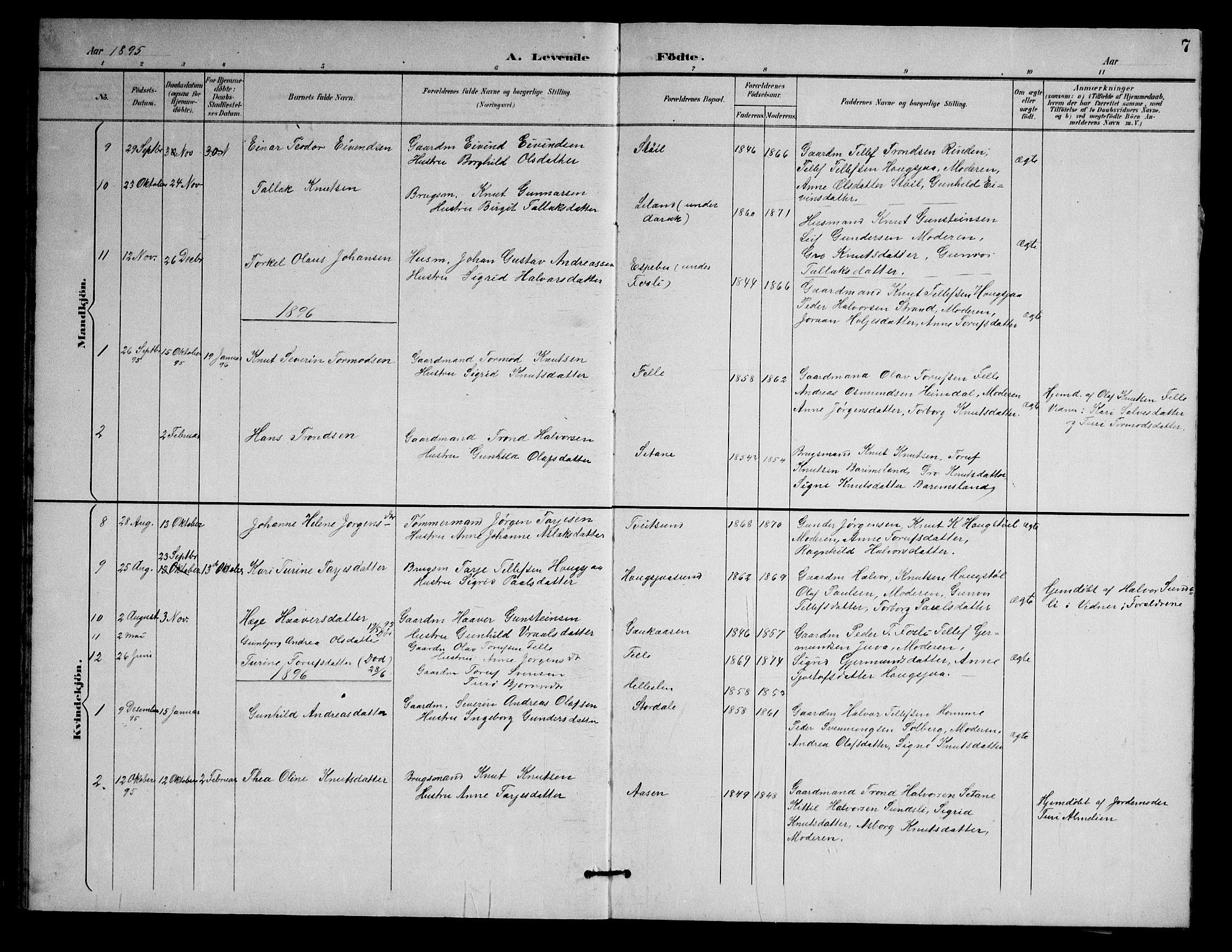 SAKO, Nissedal kirkebøker, G/Gb/L0003: Klokkerbok nr. II 3, 1893-1928, s. 7
