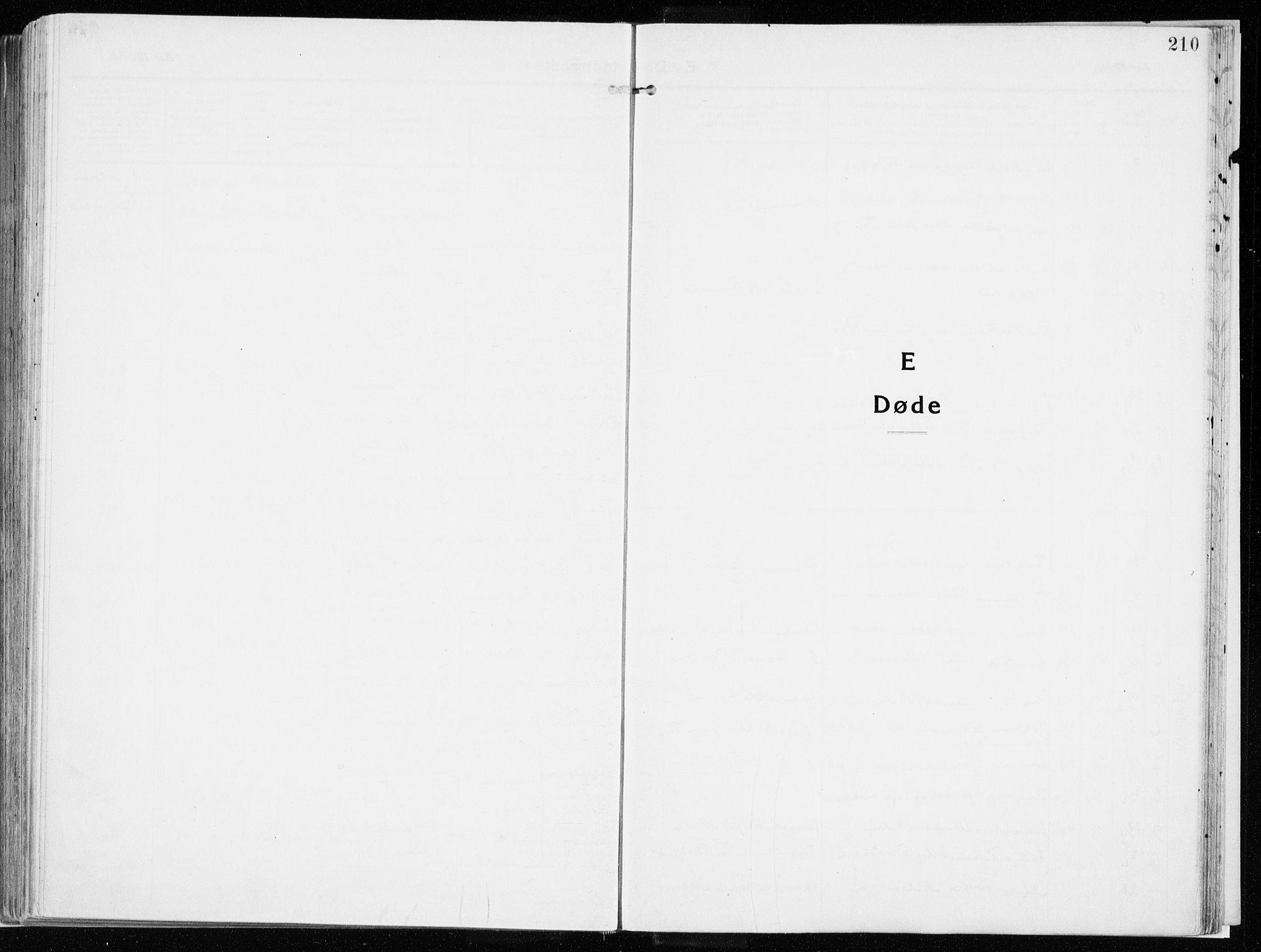 SAH, Vardal prestekontor, H/Ha/Haa/L0017: Ministerialbok nr. 17, 1915-1929, s. 210