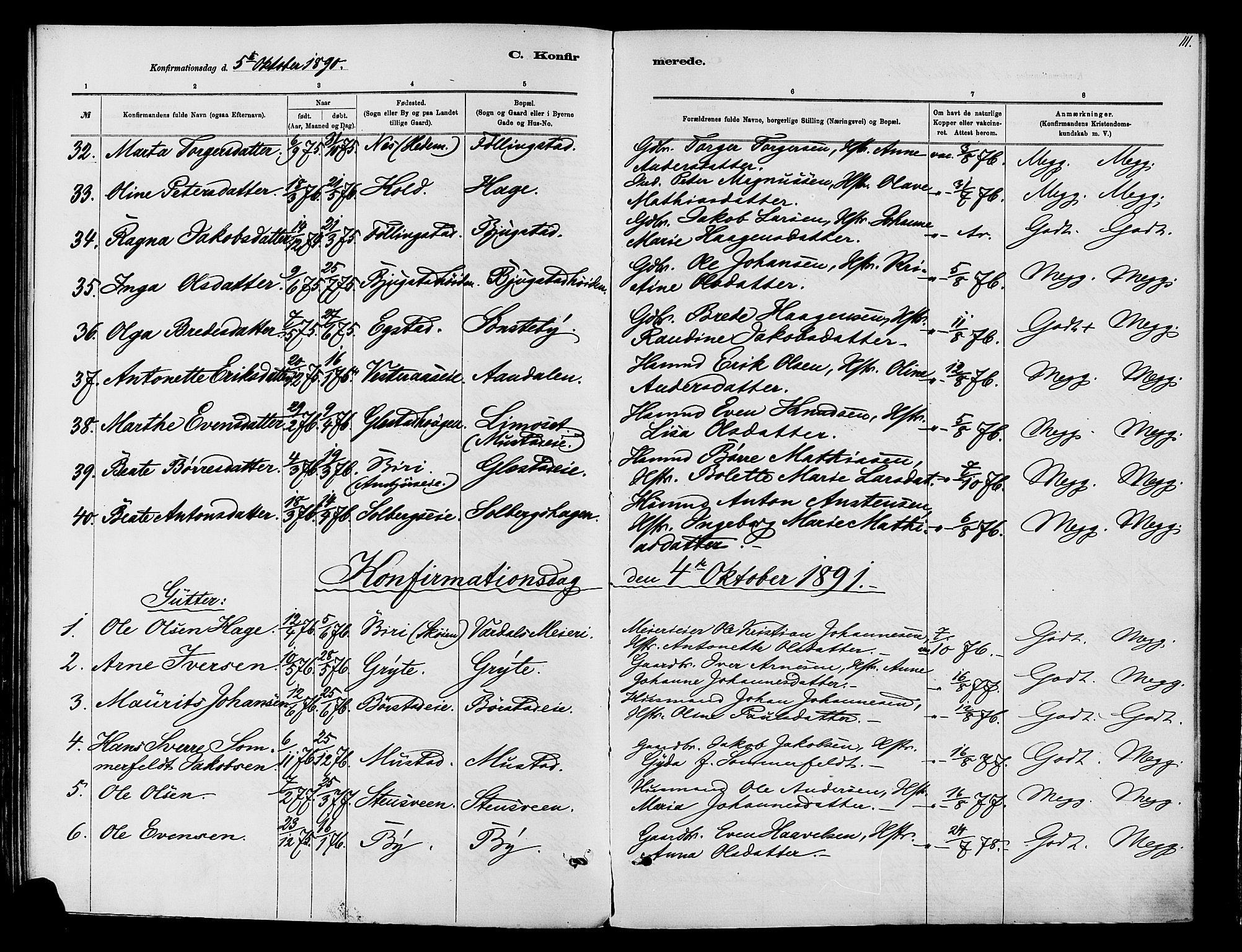 SAH, Vardal prestekontor, H/Ha/Haa/L0010: Ministerialbok nr. 10, 1878-1893, s. 111