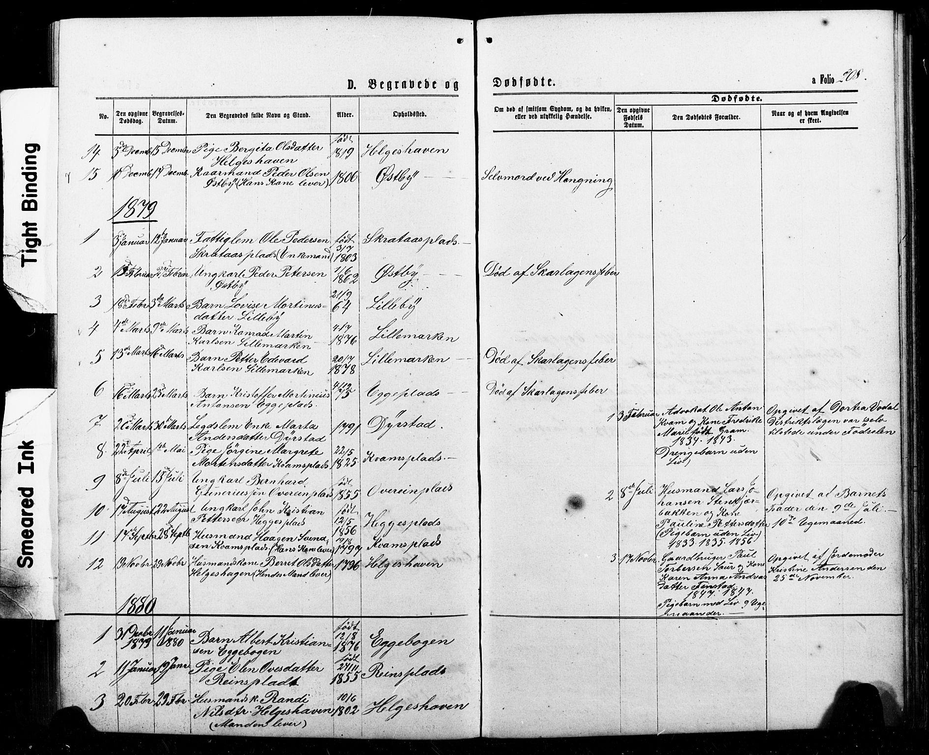 SAT, Ministerialprotokoller, klokkerbøker og fødselsregistre - Nord-Trøndelag, 740/L0380: Klokkerbok nr. 740C01, 1868-1902, s. 208