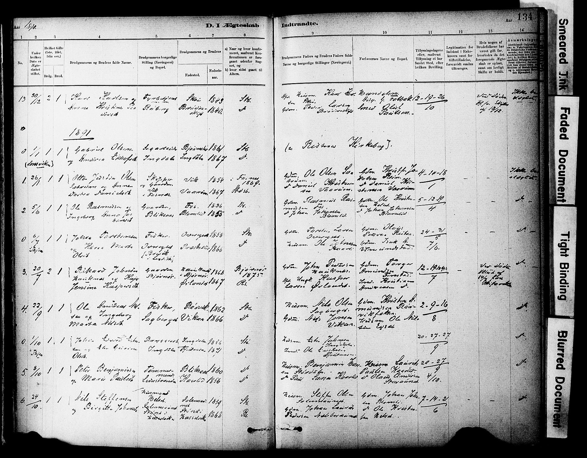 SAT, Ministerialprotokoller, klokkerbøker og fødselsregistre - Sør-Trøndelag, 646/L0615: Ministerialbok nr. 646A13, 1885-1900, s. 134