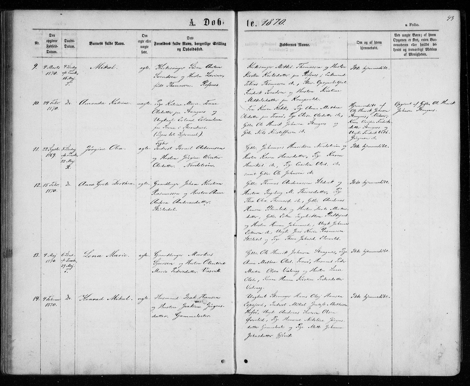 SATØ, Tranøy sokneprestkontor, I/Ia/Iaa/L0008kirke: Ministerialbok nr. 8, 1867-1877, s. 43