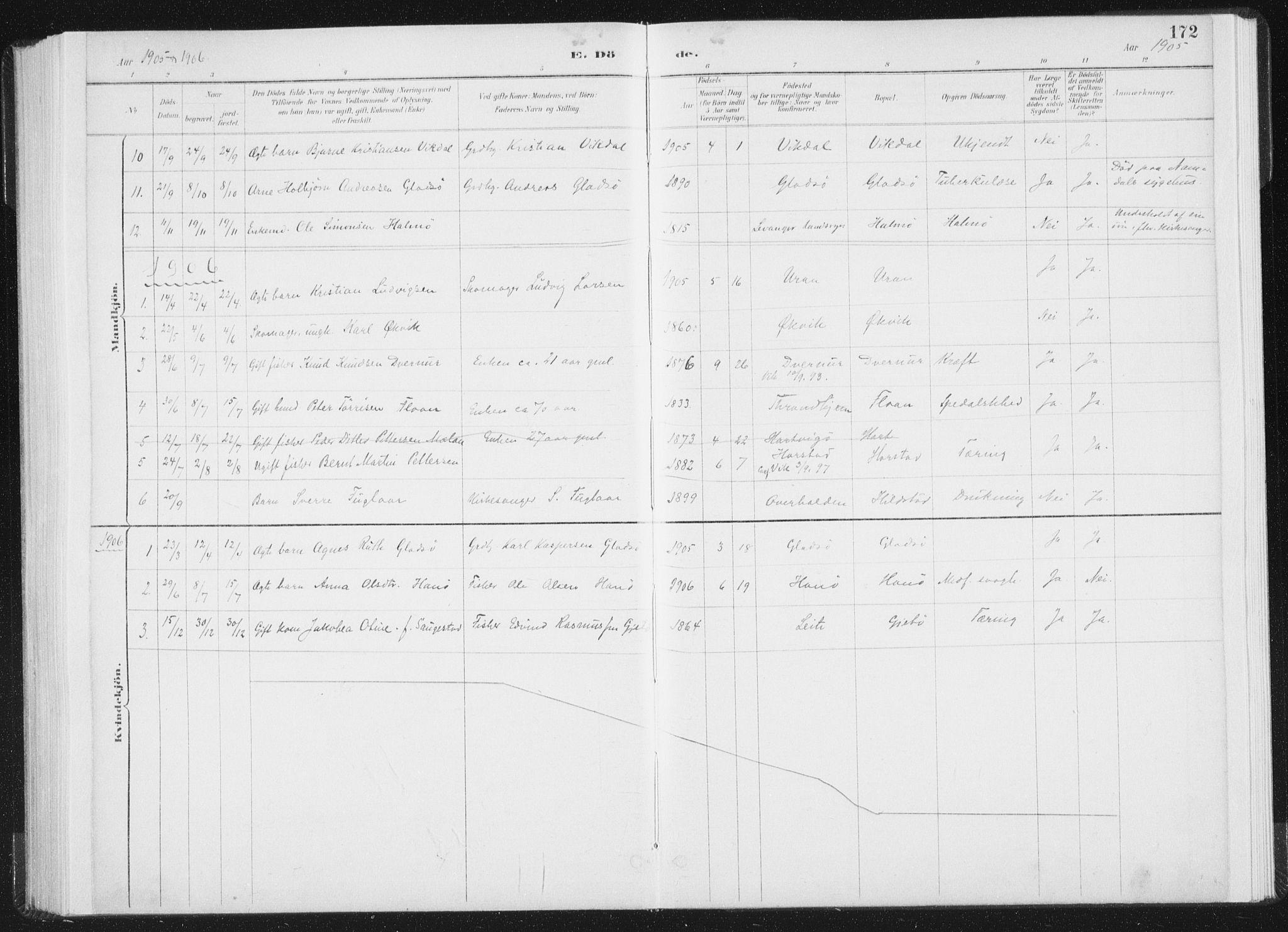 SAT, Ministerialprotokoller, klokkerbøker og fødselsregistre - Nord-Trøndelag, 771/L0597: Ministerialbok nr. 771A04, 1885-1910, s. 172