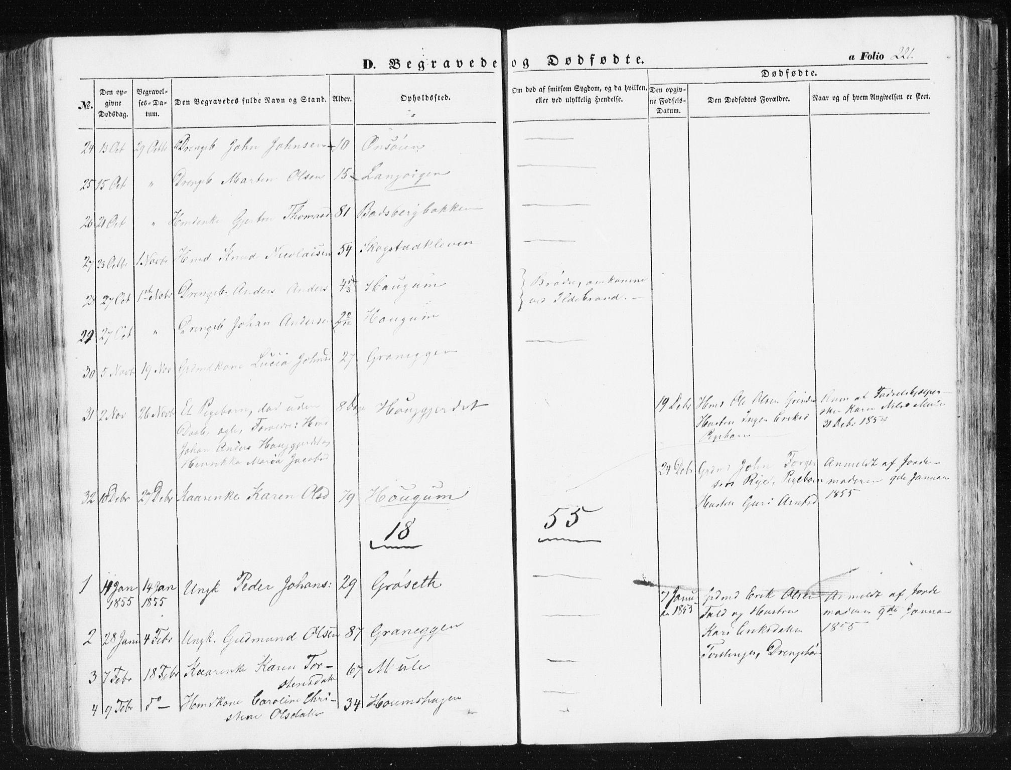 SAT, Ministerialprotokoller, klokkerbøker og fødselsregistre - Sør-Trøndelag, 612/L0376: Ministerialbok nr. 612A08, 1846-1859, s. 221