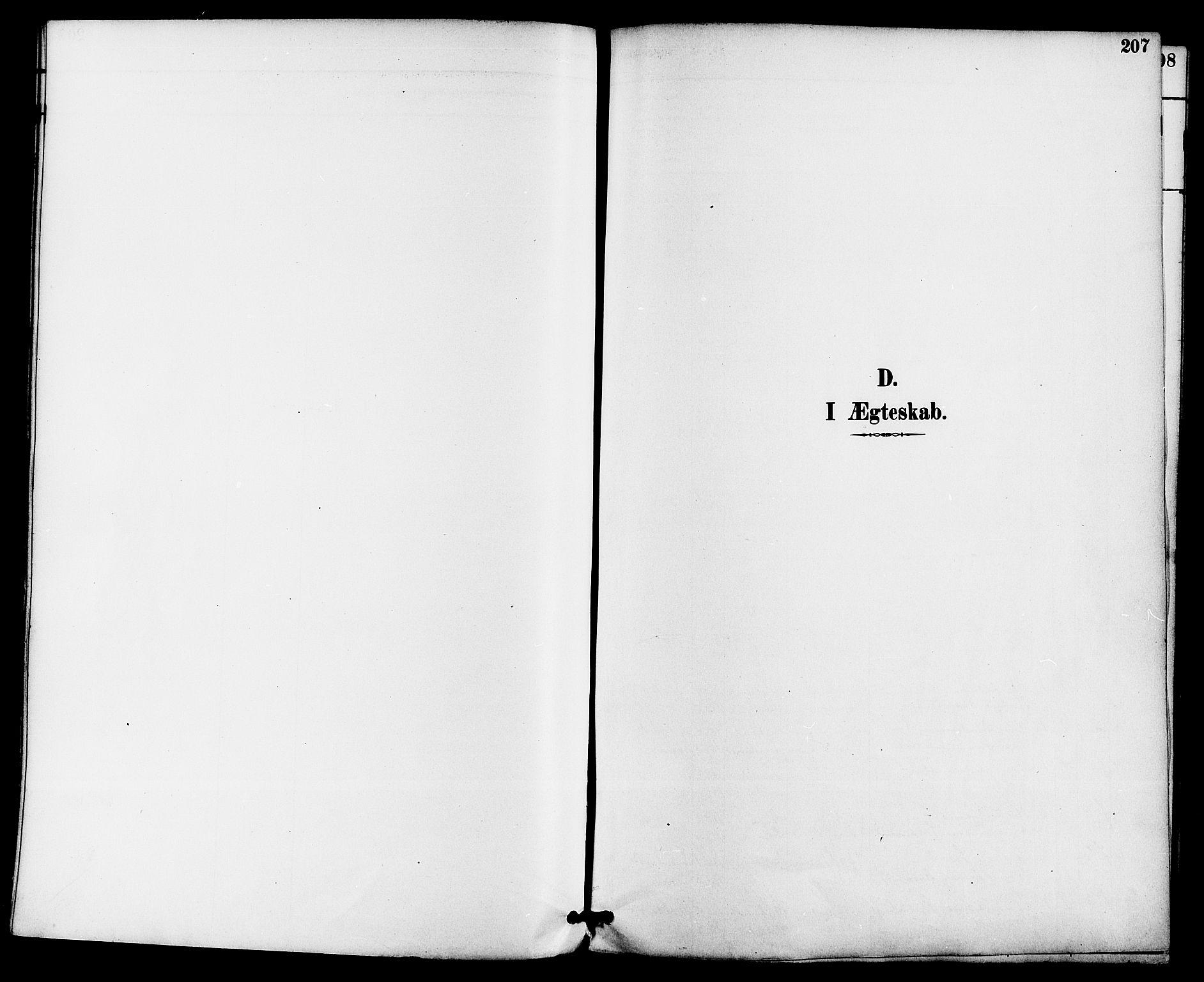 SAKO, Gjerpen kirkebøker, F/Fa/L0010: Ministerialbok nr. 10, 1886-1895, s. 207