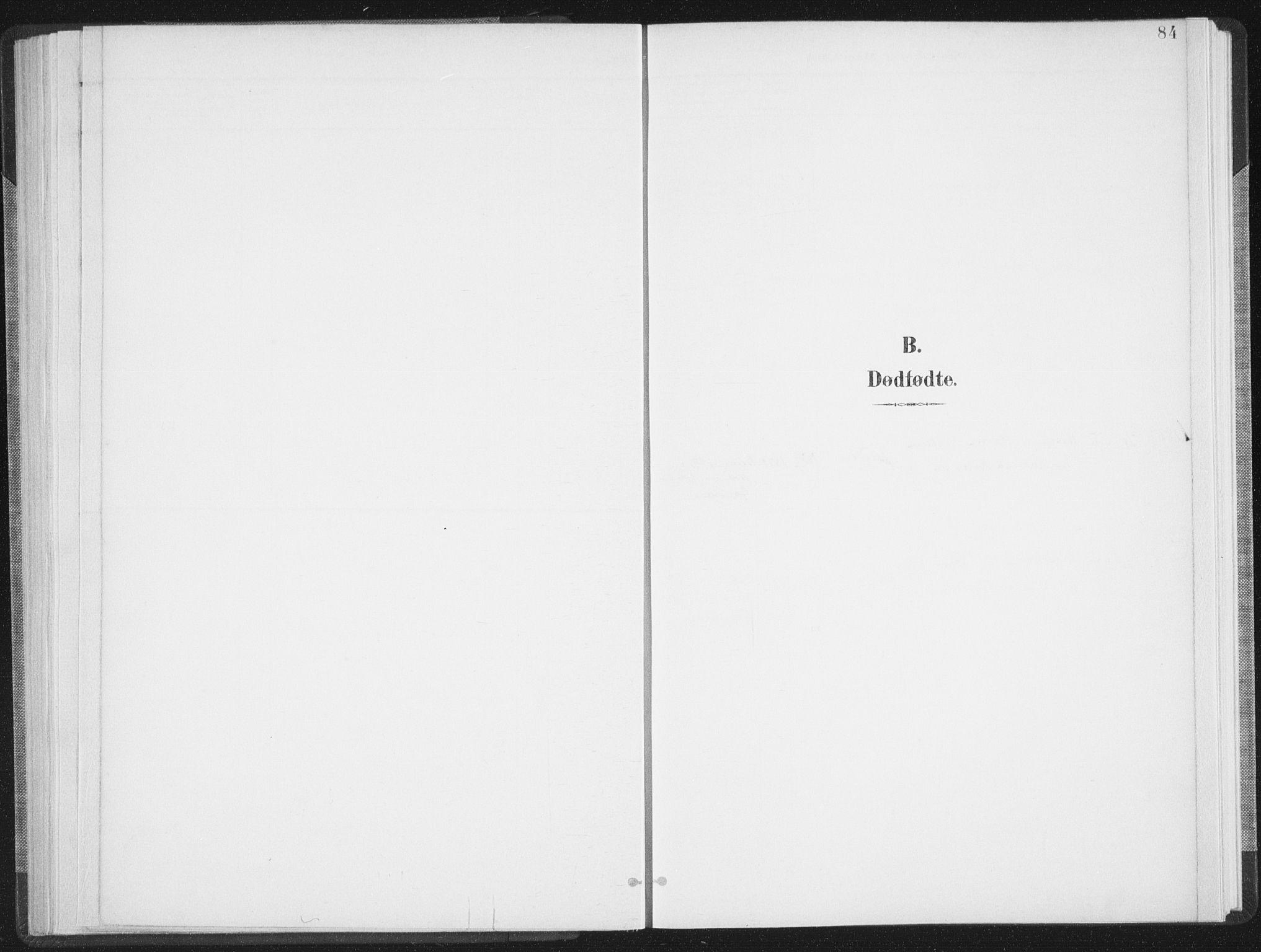 SAT, Ministerialprotokoller, klokkerbøker og fødselsregistre - Nordland, 897/L1400: Ministerialbok nr. 897A07, 1897-1908, s. 84
