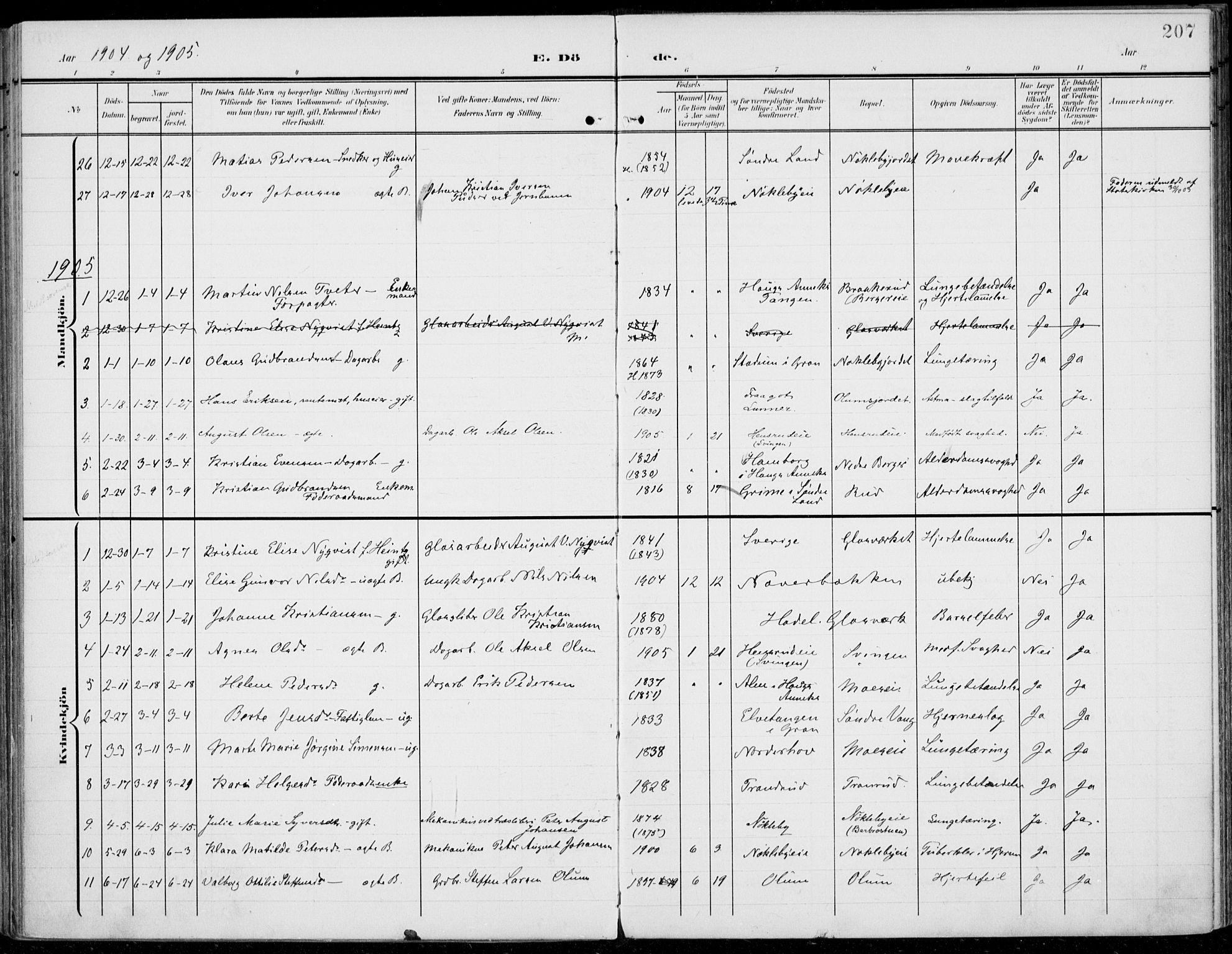 SAH, Jevnaker prestekontor, Ministerialbok nr. 11, 1902-1913, s. 207