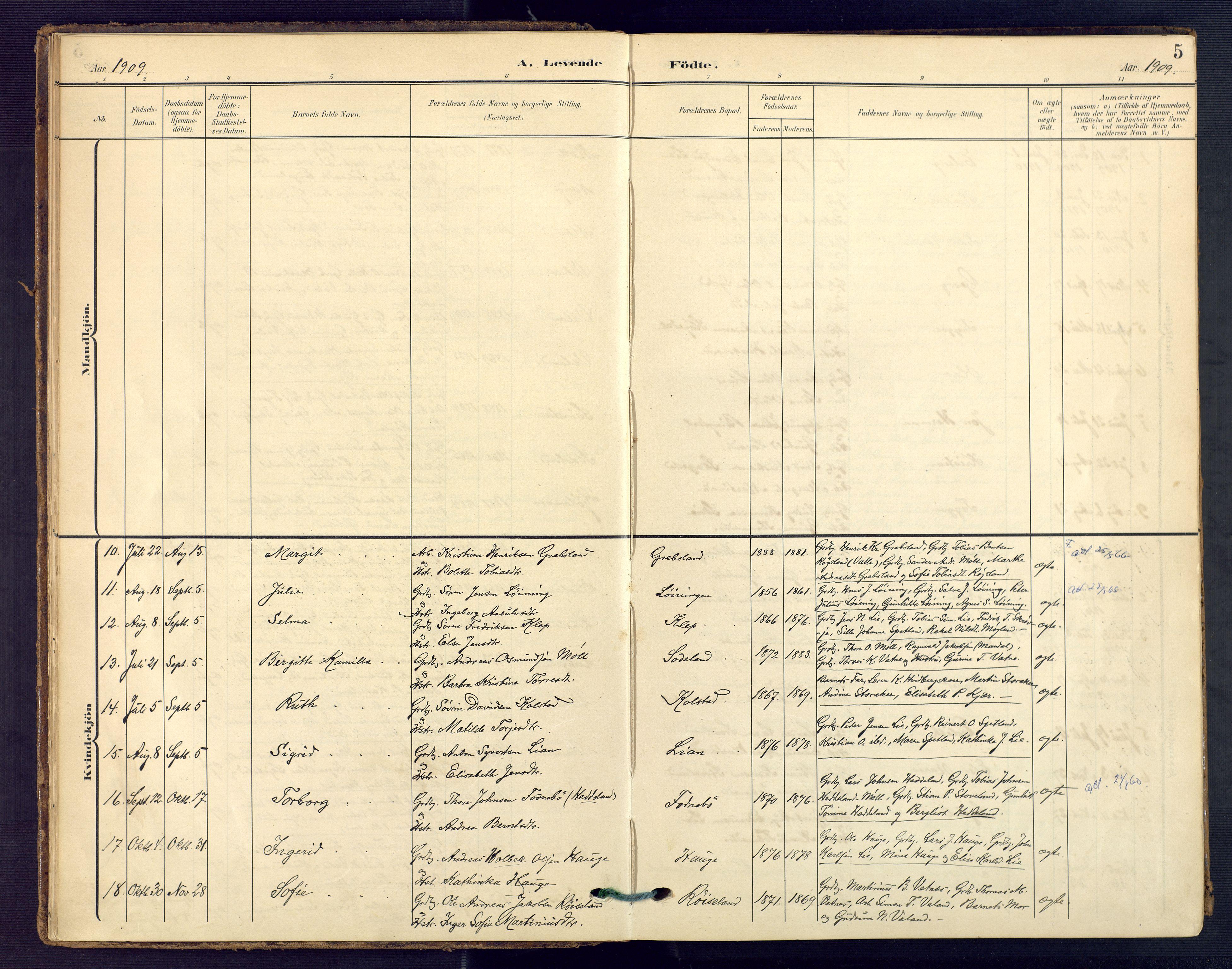 SAK, Holum sokneprestkontor, F/Fa/Faa/L0008: Ministerialbok nr. A 8, 1908-1929, s. 5