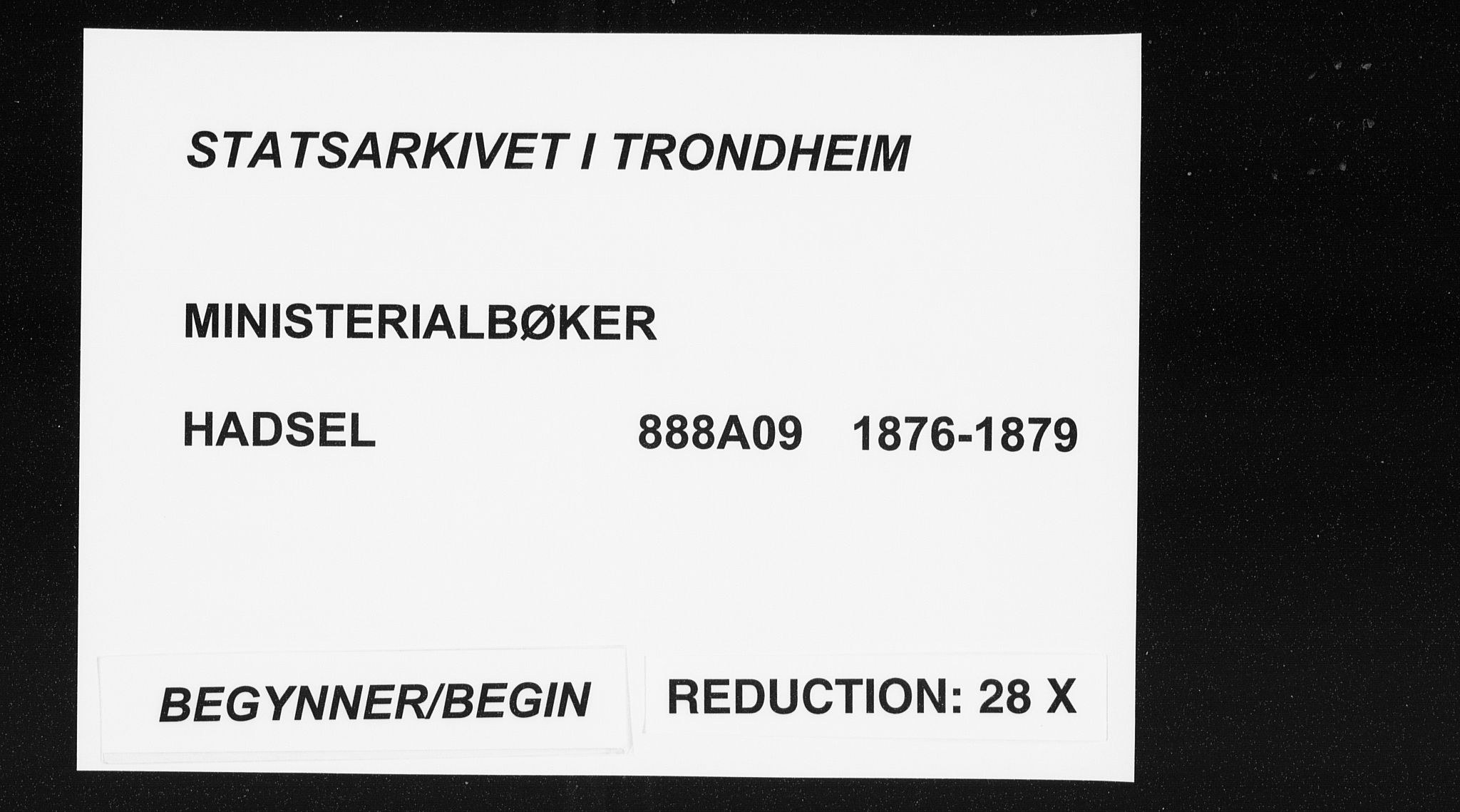 SAT, Ministerialprotokoller, klokkerbøker og fødselsregistre - Nordland, 888/L1243: Ministerialbok nr. 888A09, 1876-1879
