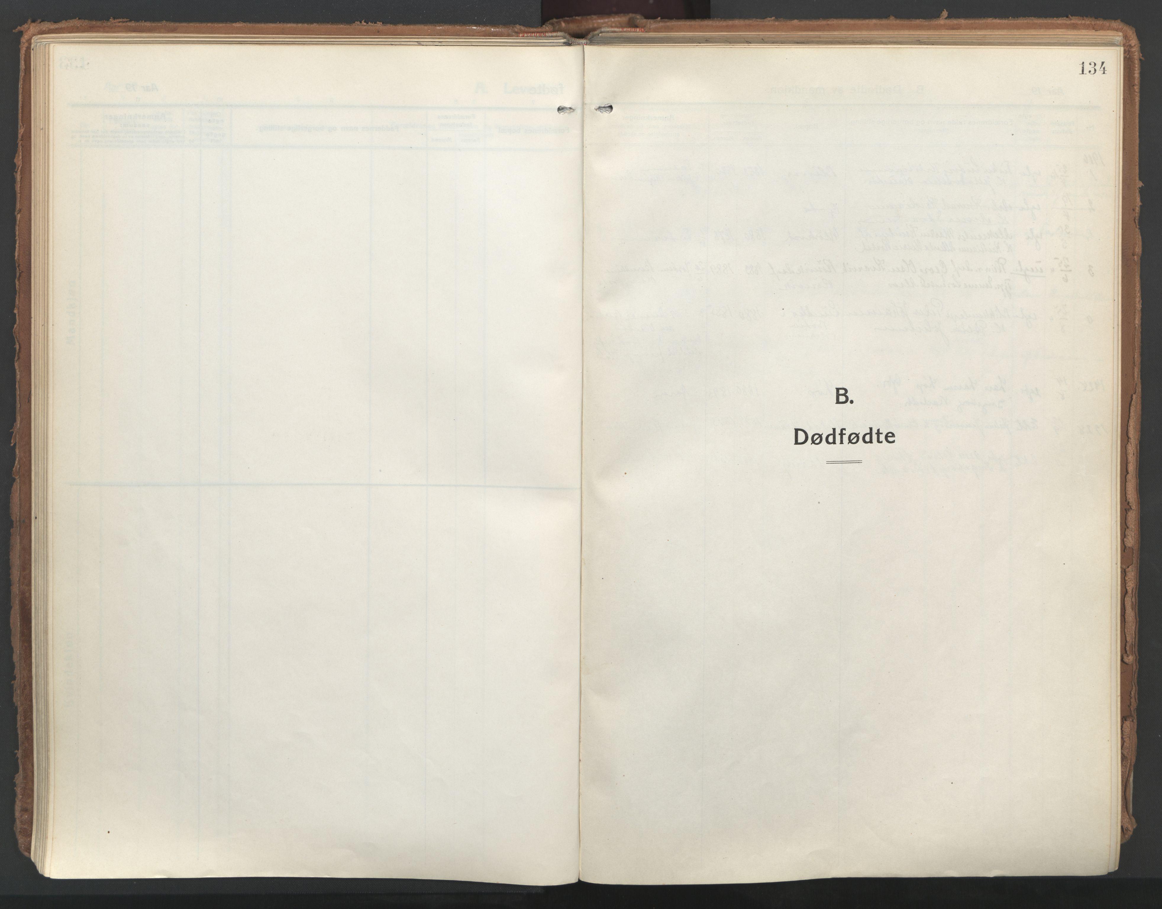 SAT, Ministerialprotokoller, klokkerbøker og fødselsregistre - Nordland, 802/L0060: Ministerialbok nr. 802A07, 1916-1933, s. 134