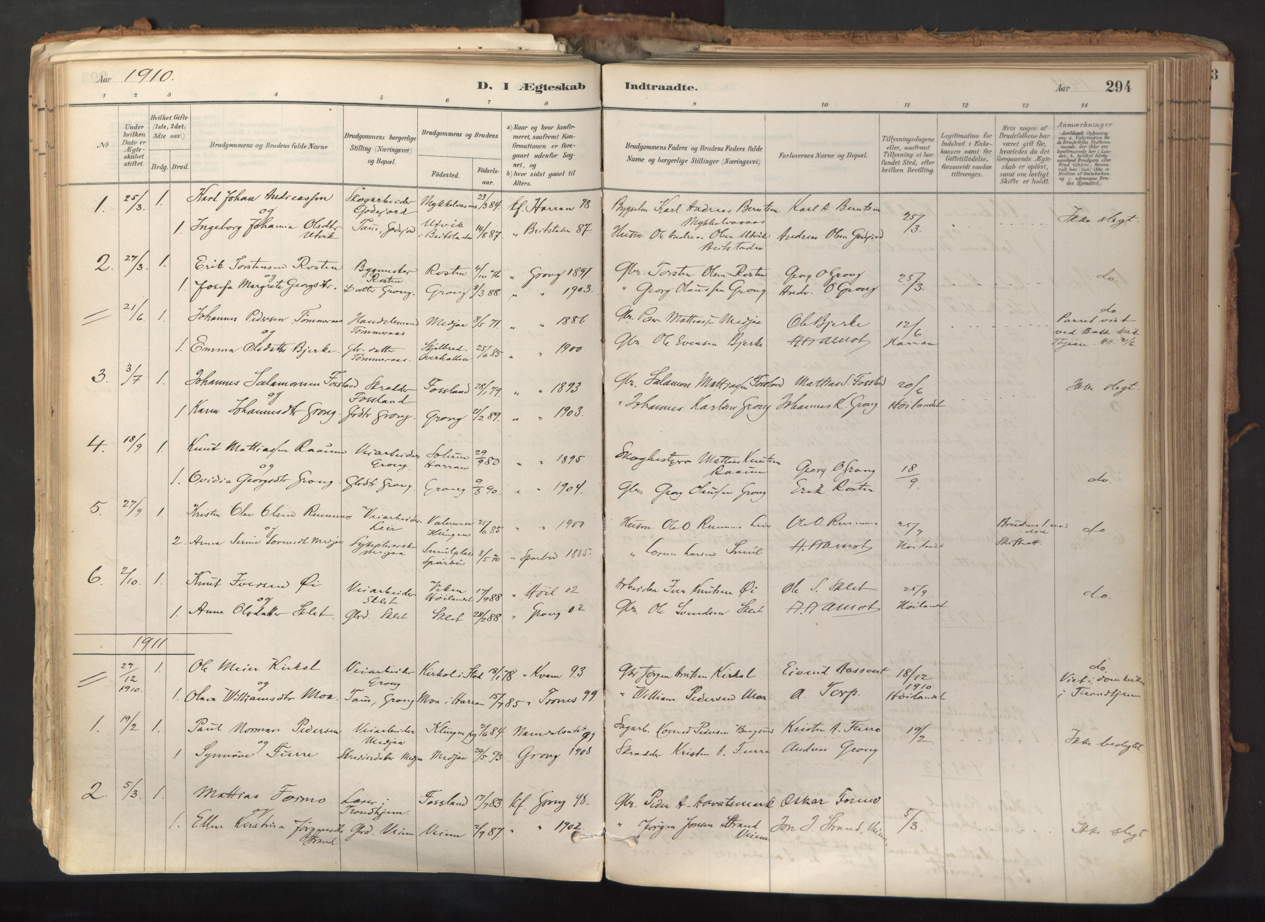 SAT, Ministerialprotokoller, klokkerbøker og fødselsregistre - Nord-Trøndelag, 758/L0519: Ministerialbok nr. 758A04, 1880-1926, s. 294