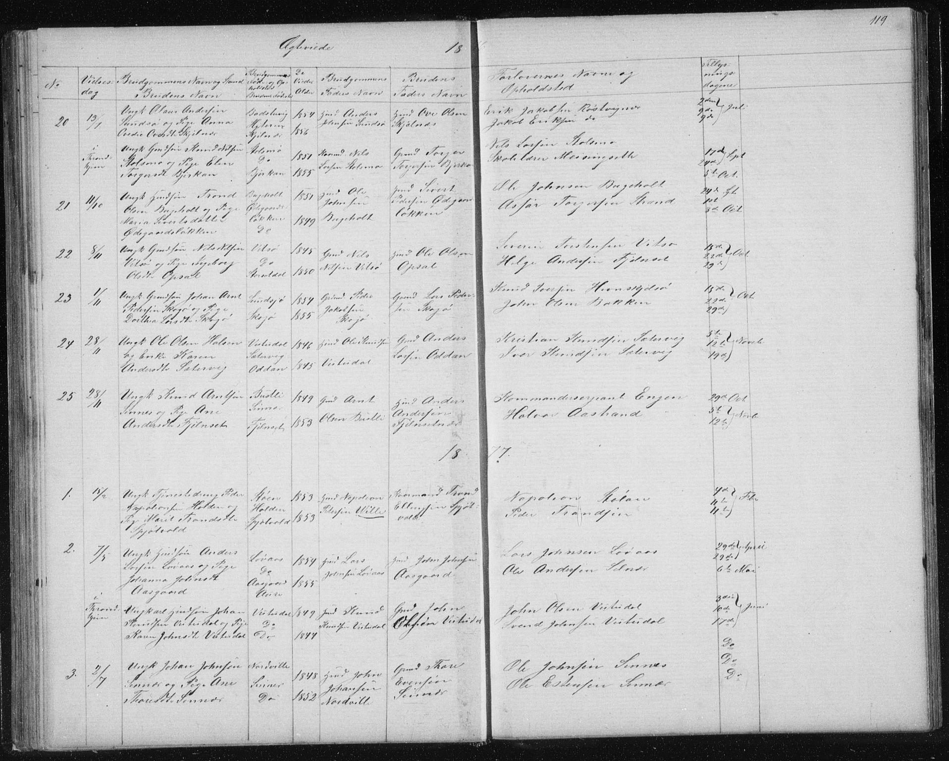 SAT, Ministerialprotokoller, klokkerbøker og fødselsregistre - Sør-Trøndelag, 630/L0503: Klokkerbok nr. 630C01, 1869-1878, s. 119