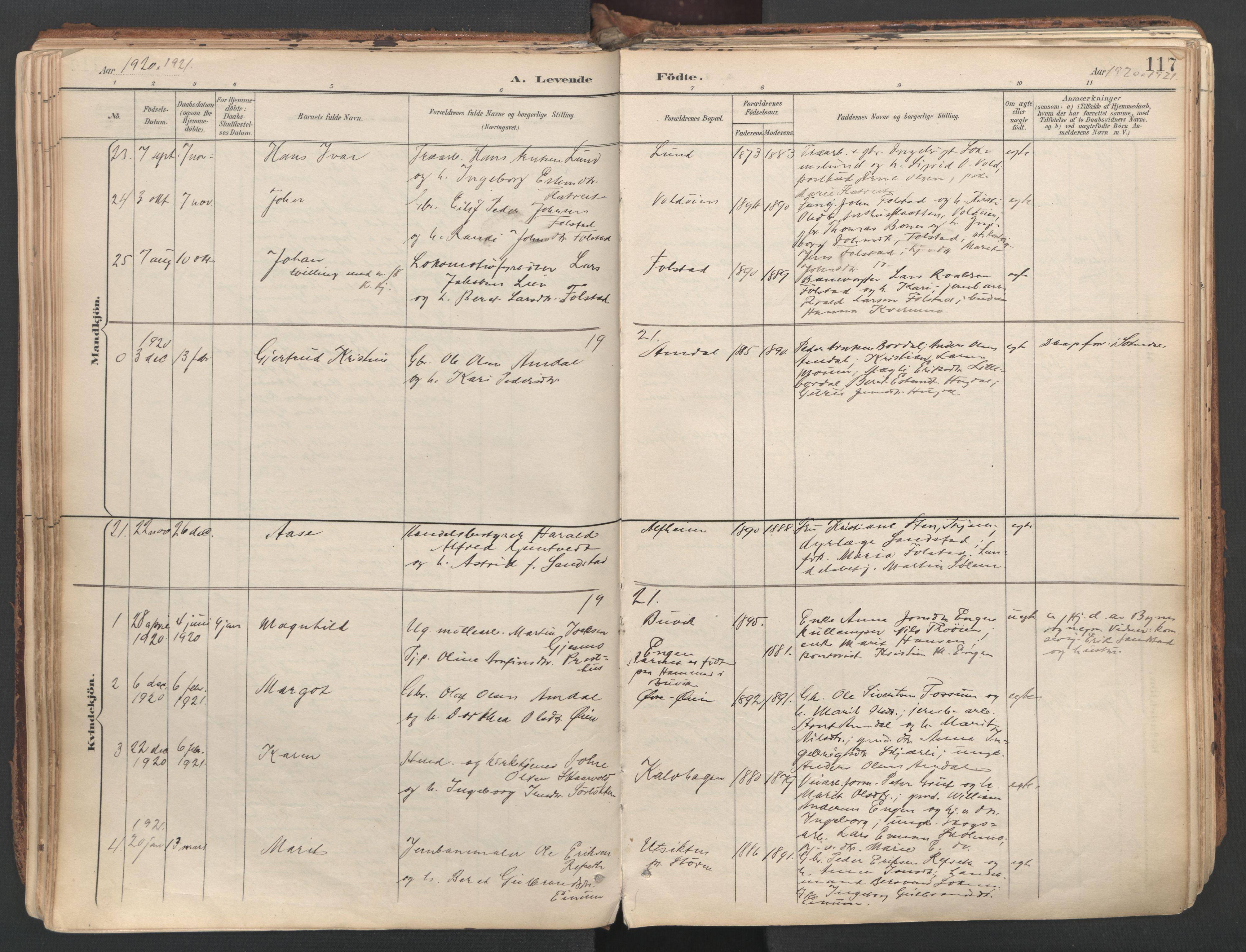 SAT, Ministerialprotokoller, klokkerbøker og fødselsregistre - Sør-Trøndelag, 687/L1004: Ministerialbok nr. 687A10, 1891-1923, s. 117