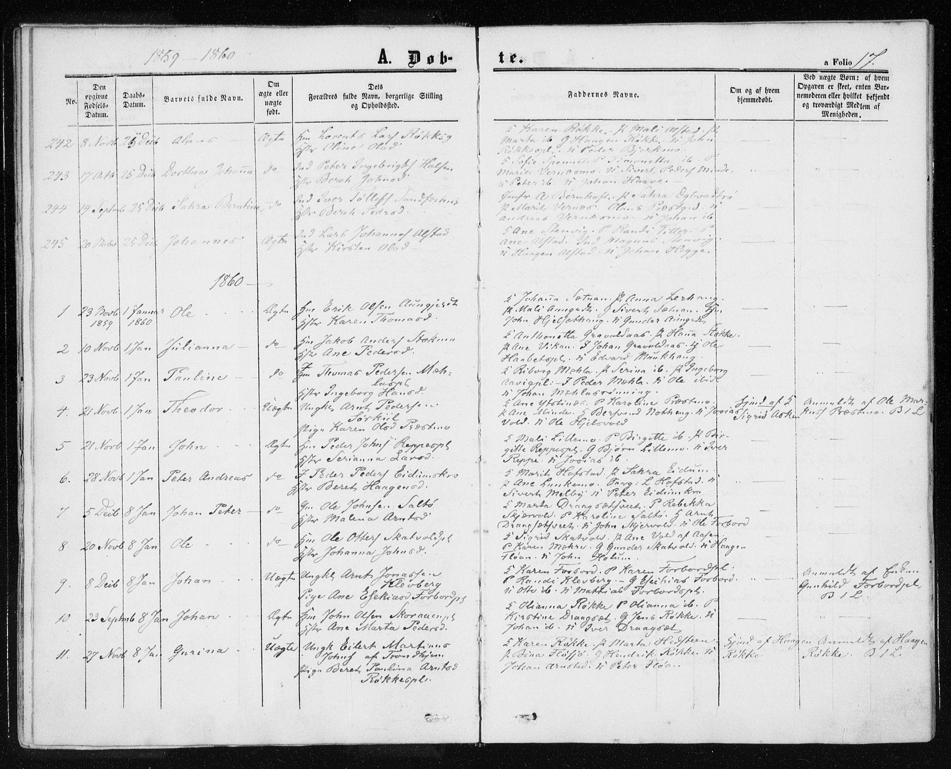 SAT, Ministerialprotokoller, klokkerbøker og fødselsregistre - Nord-Trøndelag, 709/L0075: Ministerialbok nr. 709A15, 1859-1870, s. 17