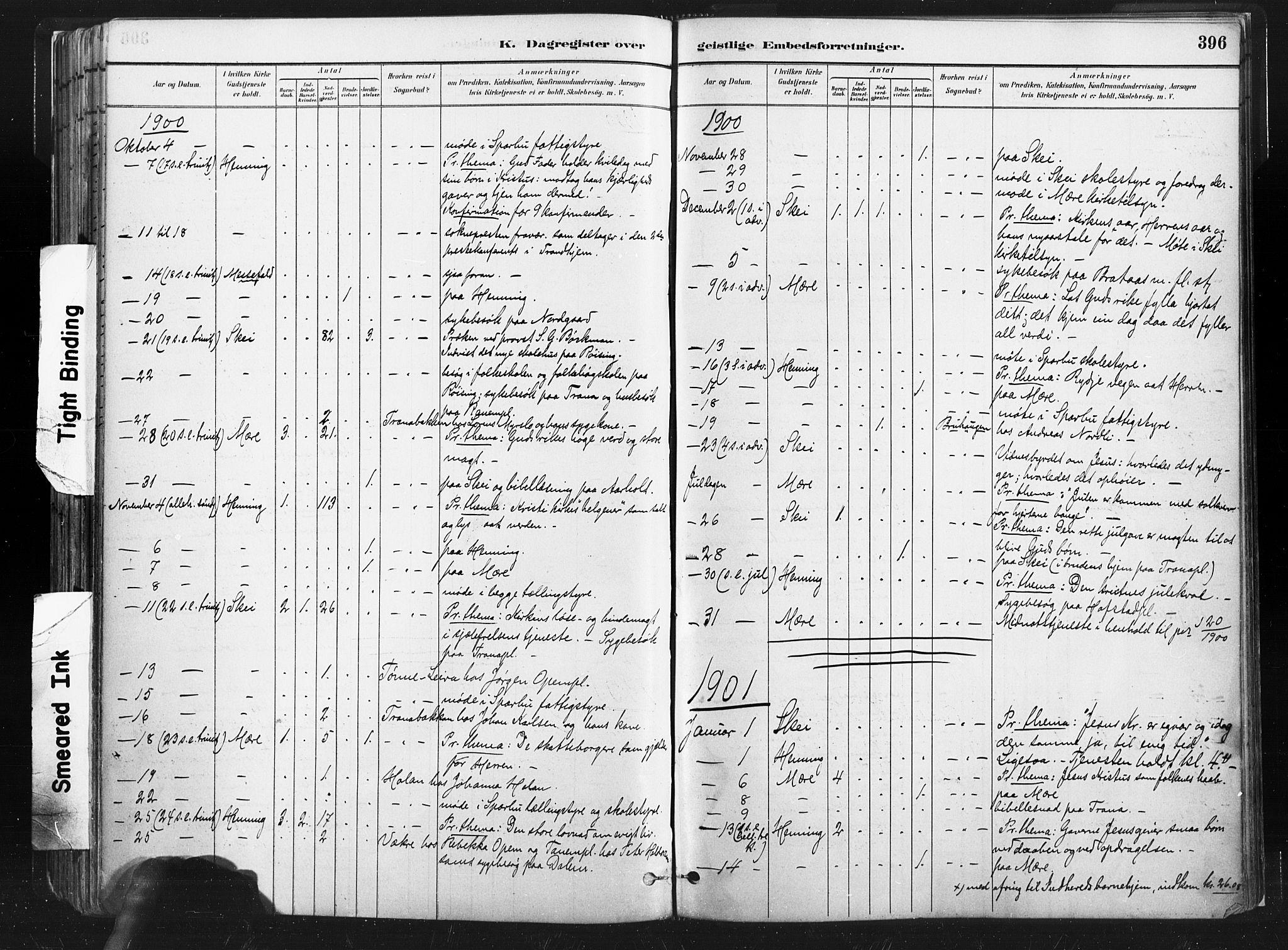 SAT, Ministerialprotokoller, klokkerbøker og fødselsregistre - Nord-Trøndelag, 735/L0351: Ministerialbok nr. 735A10, 1884-1908, s. 396