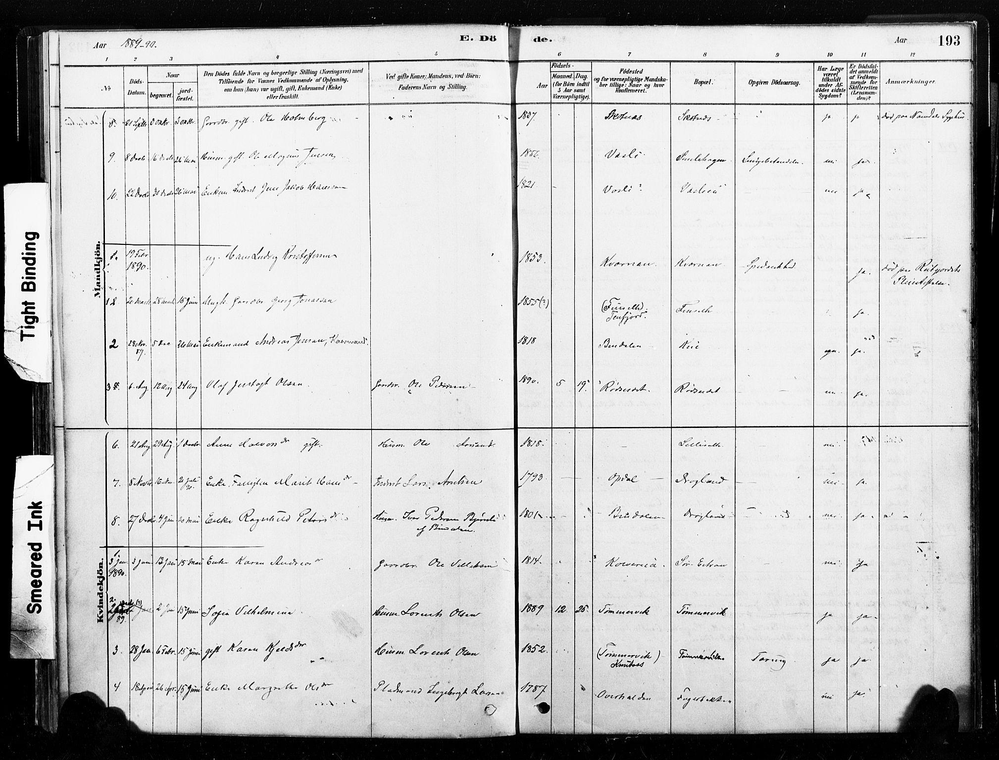 SAT, Ministerialprotokoller, klokkerbøker og fødselsregistre - Nord-Trøndelag, 789/L0705: Ministerialbok nr. 789A01, 1878-1910, s. 193