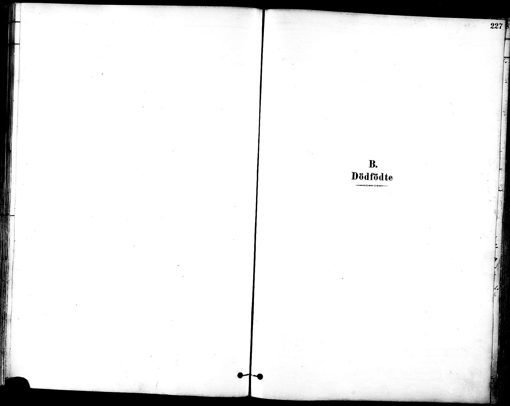 SAT, Ministerialprotokoller, klokkerbøker og fødselsregistre - Sør-Trøndelag, 601/L0057: Ministerialbok nr. 601A25, 1877-1891, s. 227