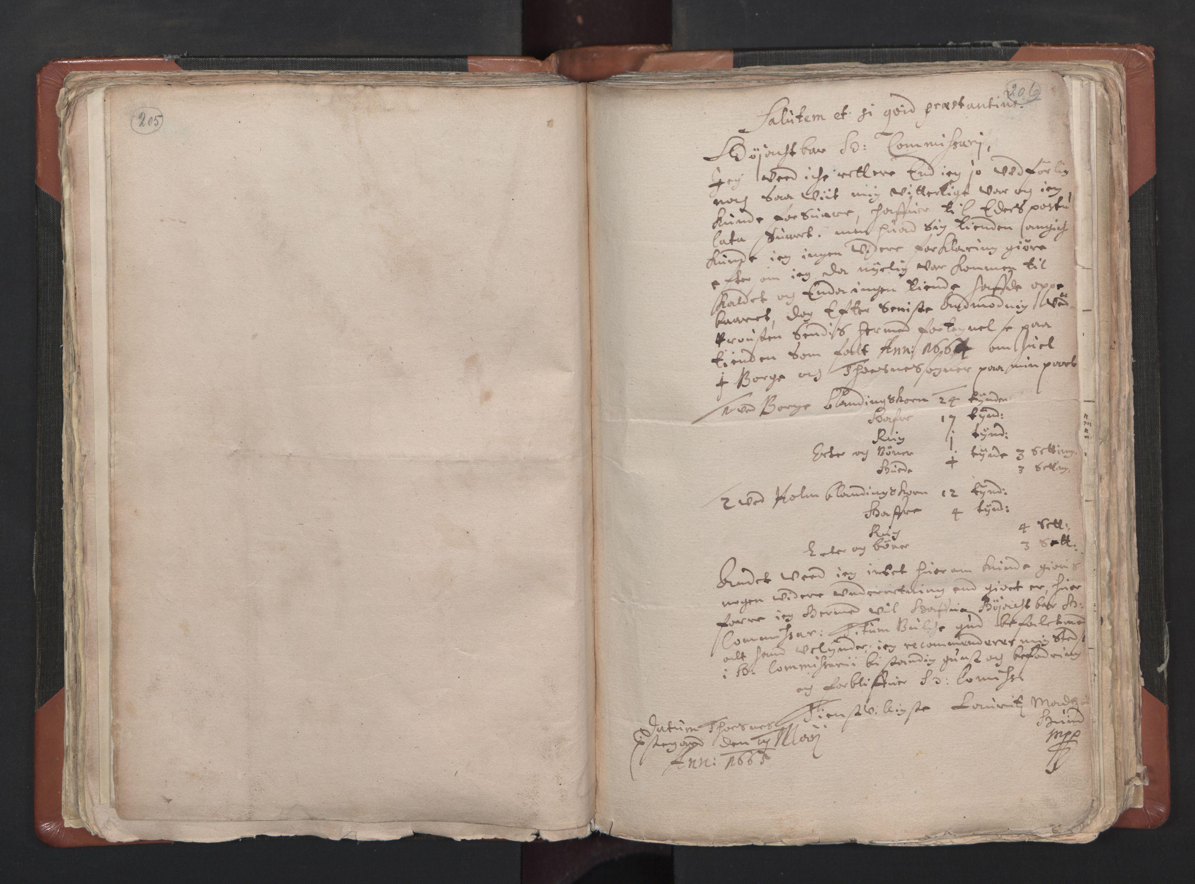 RA, Sogneprestenes manntall 1664-1666, nr. 1: Nedre Borgesyssel prosti, 1664-1666, s. 205-206