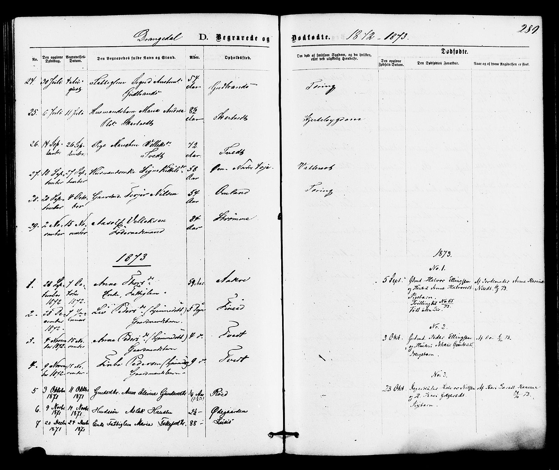 SAKO, Drangedal kirkebøker, F/Fa/L0009: Ministerialbok nr. 9 /1, 1872-1884, s. 289