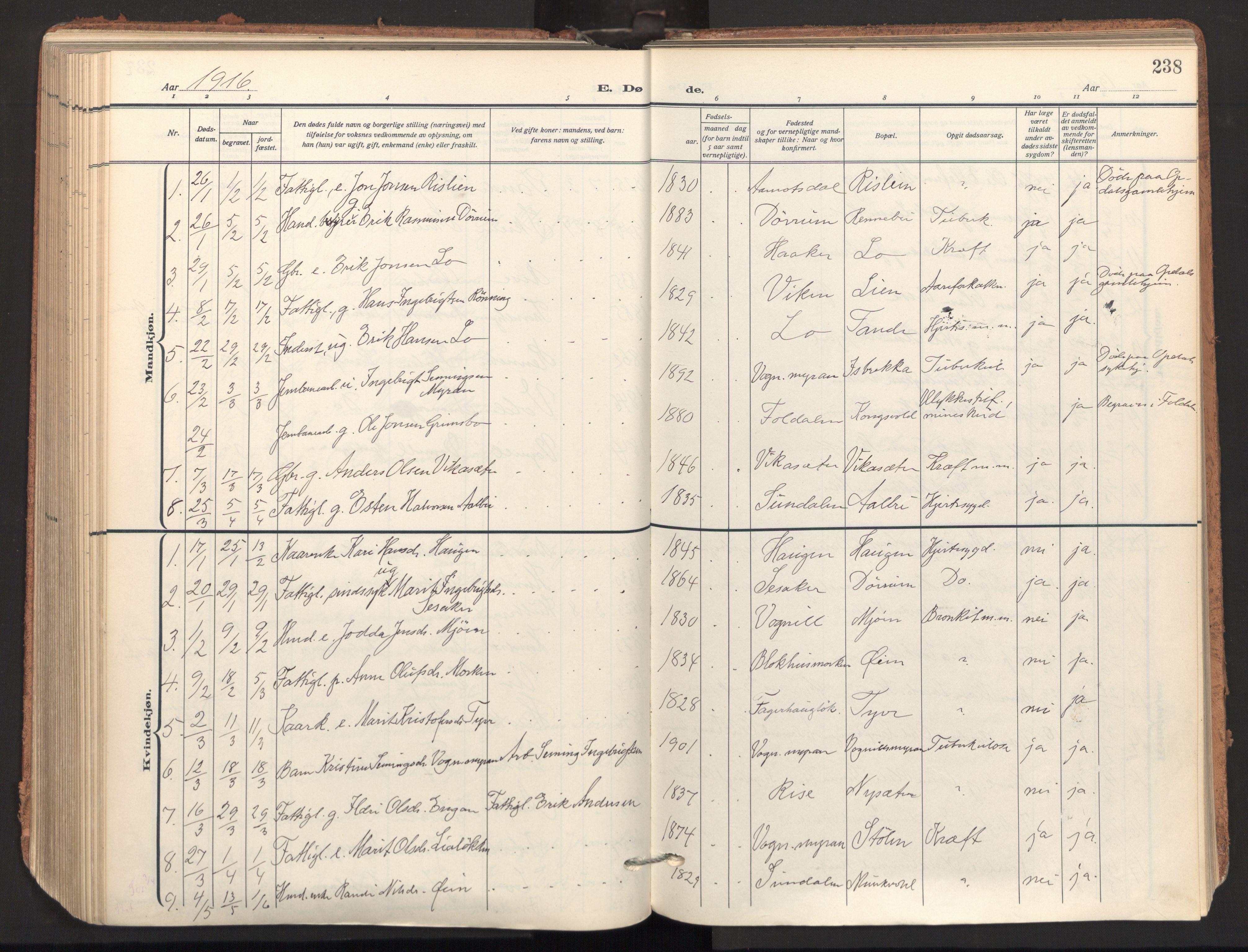 SAT, Ministerialprotokoller, klokkerbøker og fødselsregistre - Sør-Trøndelag, 678/L0909: Ministerialbok nr. 678A17, 1912-1930, s. 238