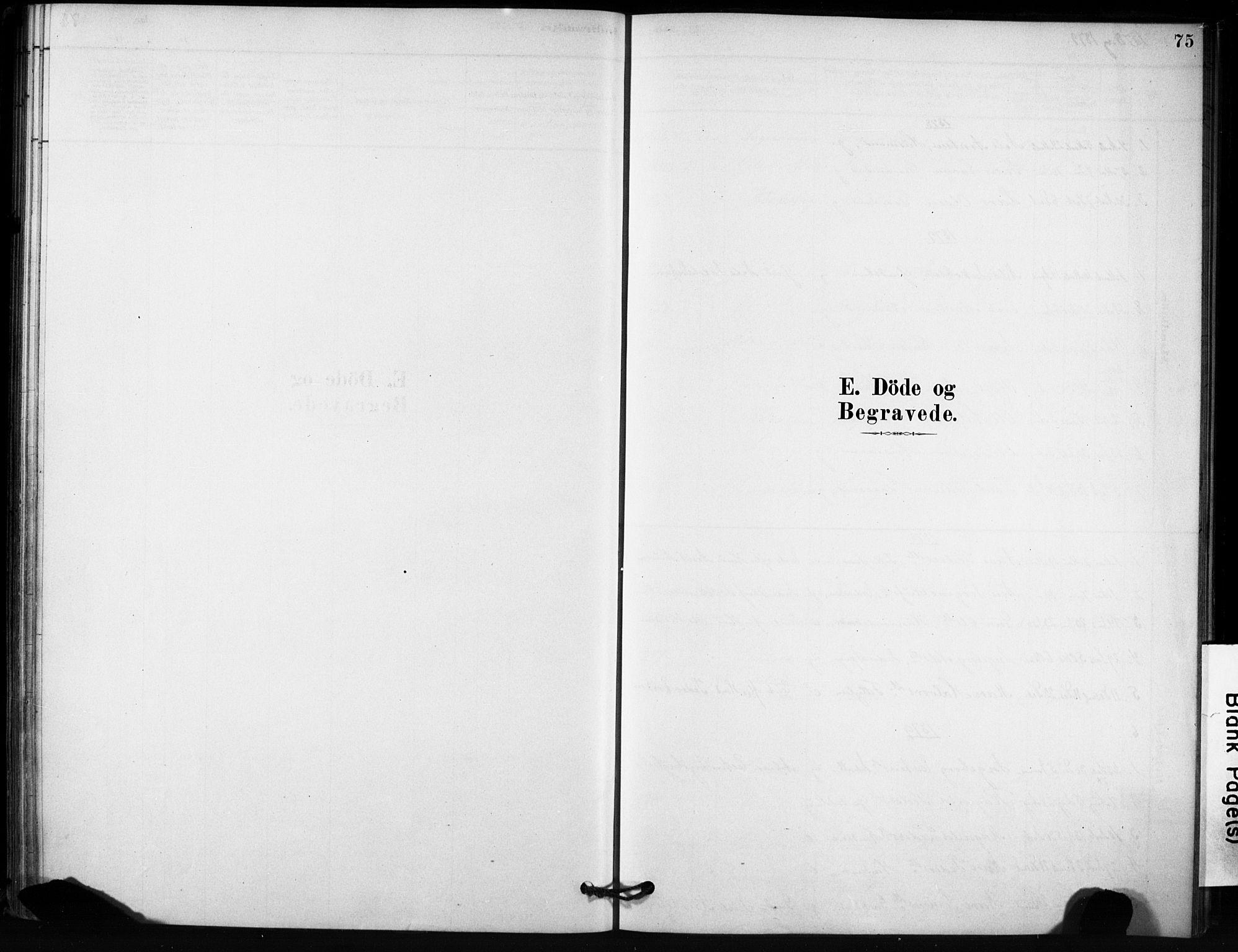 SAT, Ministerialprotokoller, klokkerbøker og fødselsregistre - Sør-Trøndelag, 666/L0786: Ministerialbok nr. 666A04, 1878-1895, s. 75