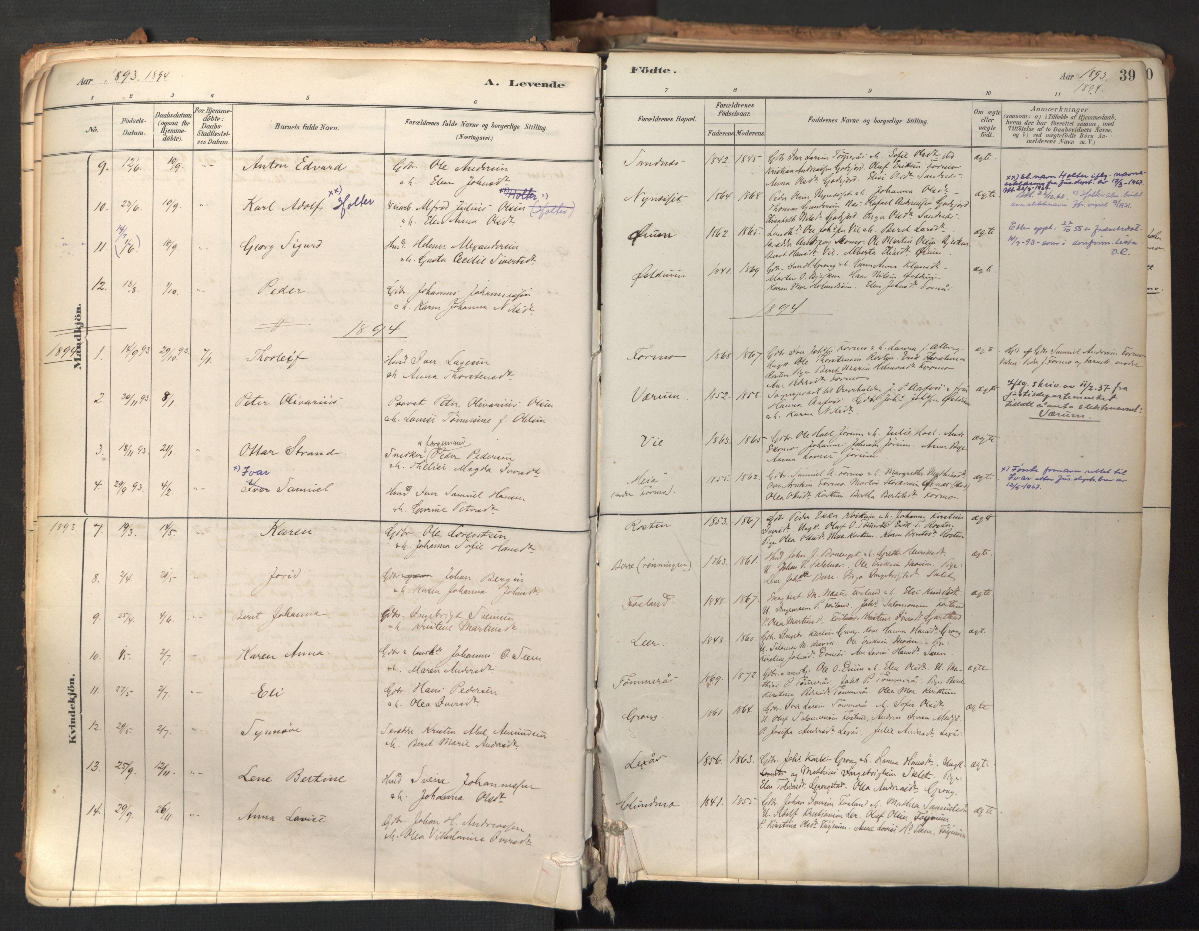 SAT, Ministerialprotokoller, klokkerbøker og fødselsregistre - Nord-Trøndelag, 758/L0519: Ministerialbok nr. 758A04, 1880-1926, s. 39