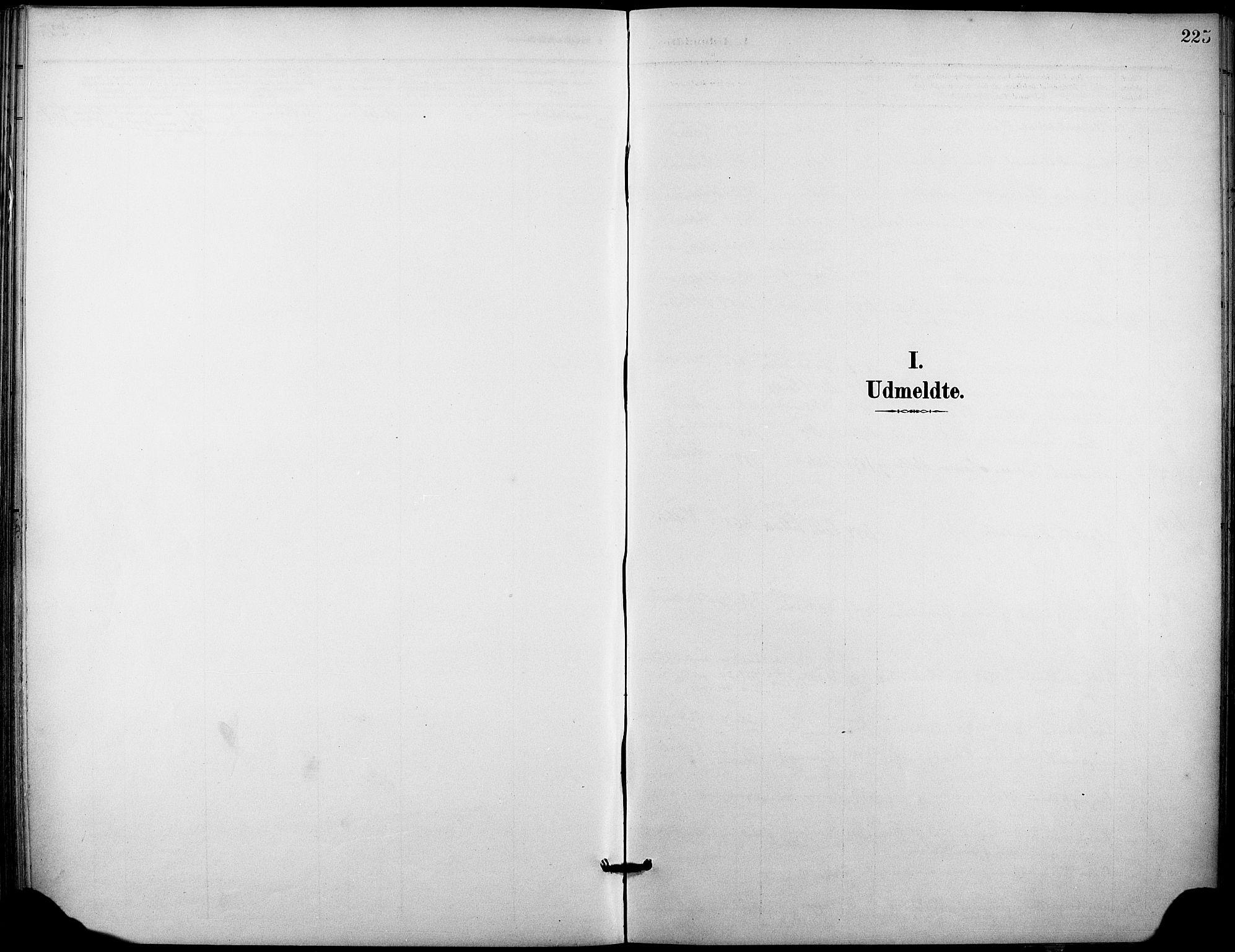 SAKO, Holla kirkebøker, F/Fa/L0010: Ministerialbok nr. 10, 1897-1907, s. 225
