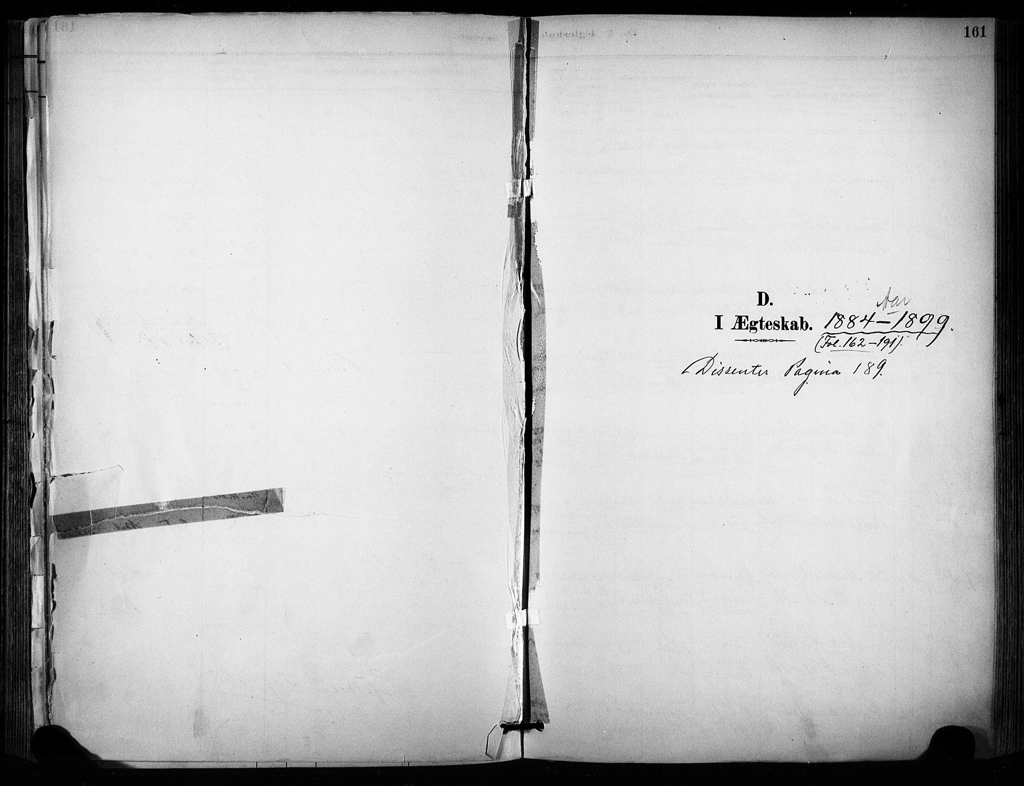 SAKO, Sannidal kirkebøker, F/Fa/L0015: Ministerialbok nr. 15, 1884-1899, s. 161
