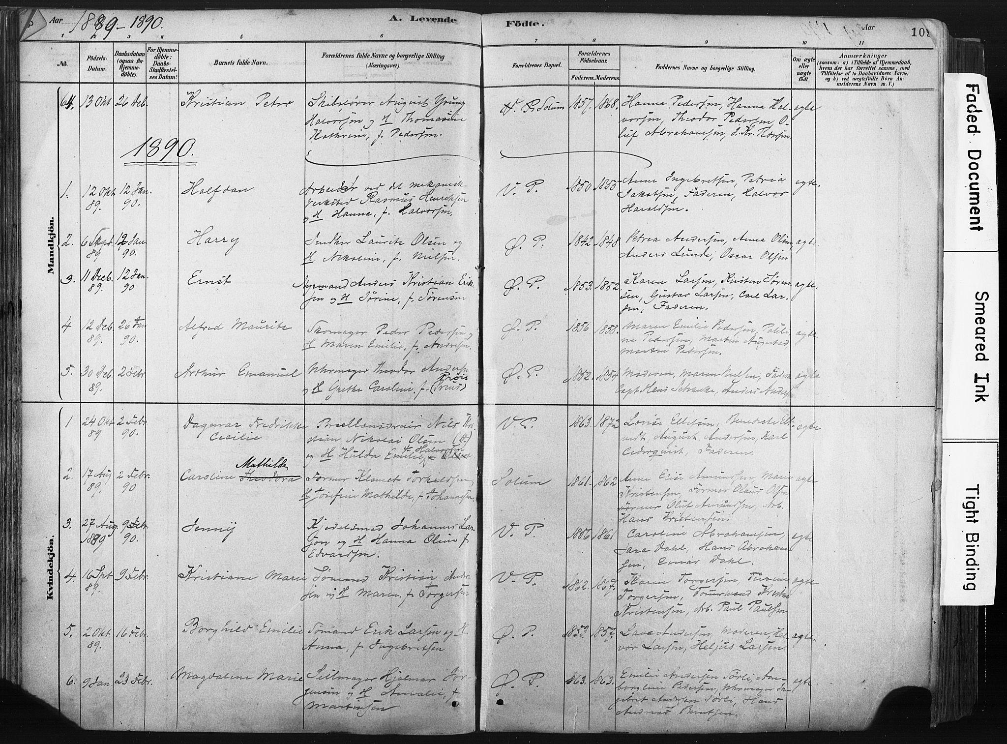 SAKO, Porsgrunn kirkebøker , F/Fa/L0008: Ministerialbok nr. 8, 1878-1895, s. 109