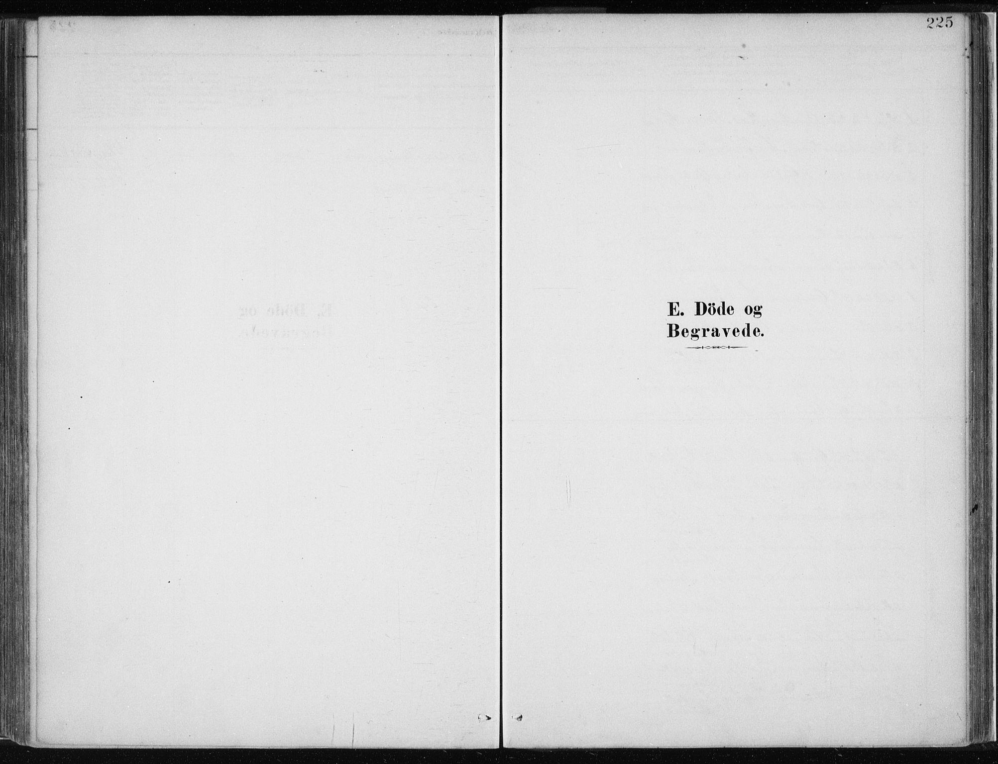 SAB, Masfjorden Soknepresembete, Ministerialbok nr. B  1, 1876-1899, s. 225
