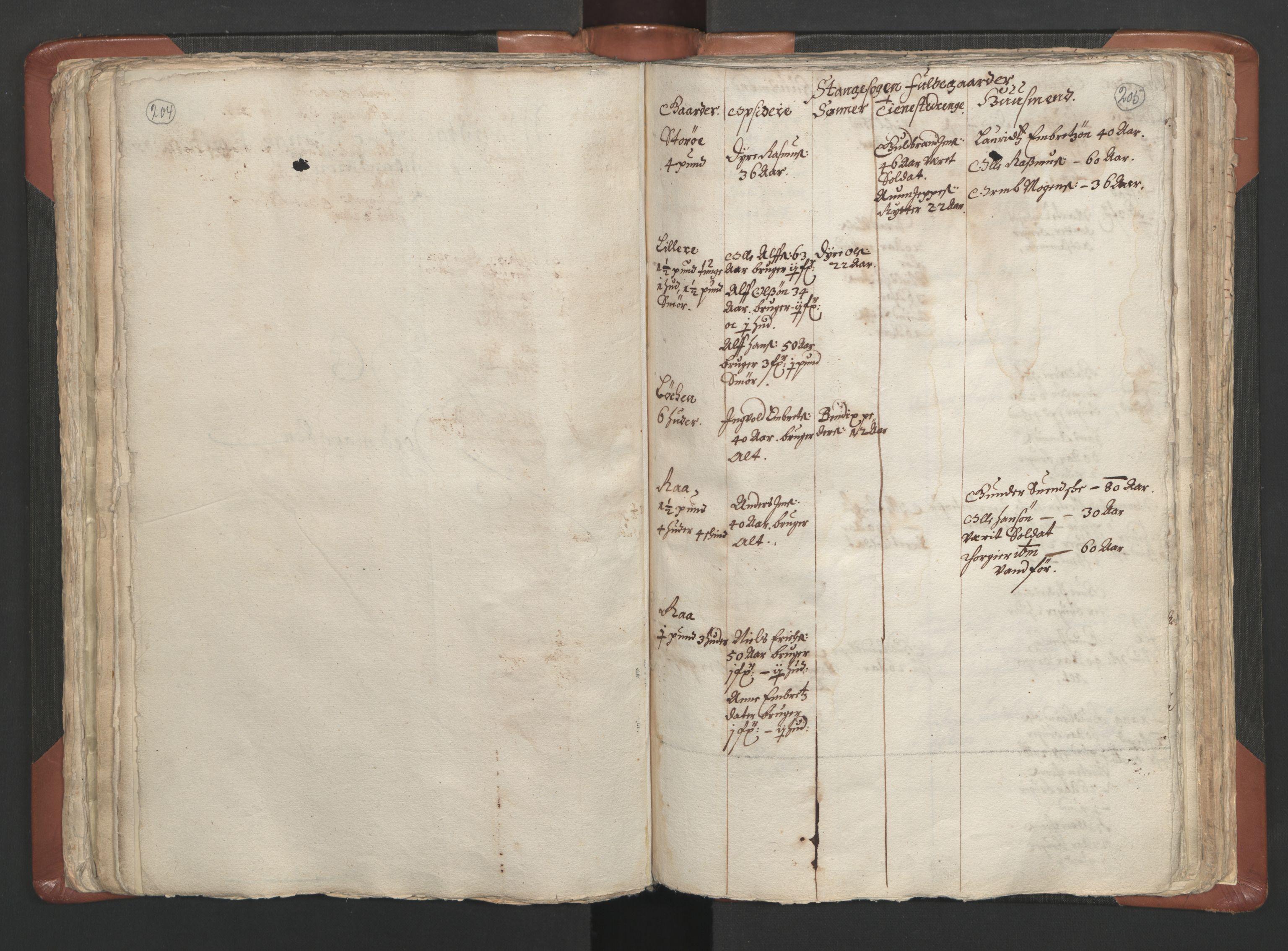 RA, Sogneprestenes manntall 1664-1666, nr. 5: Hedmark prosti, 1664-1666, s. 204-205