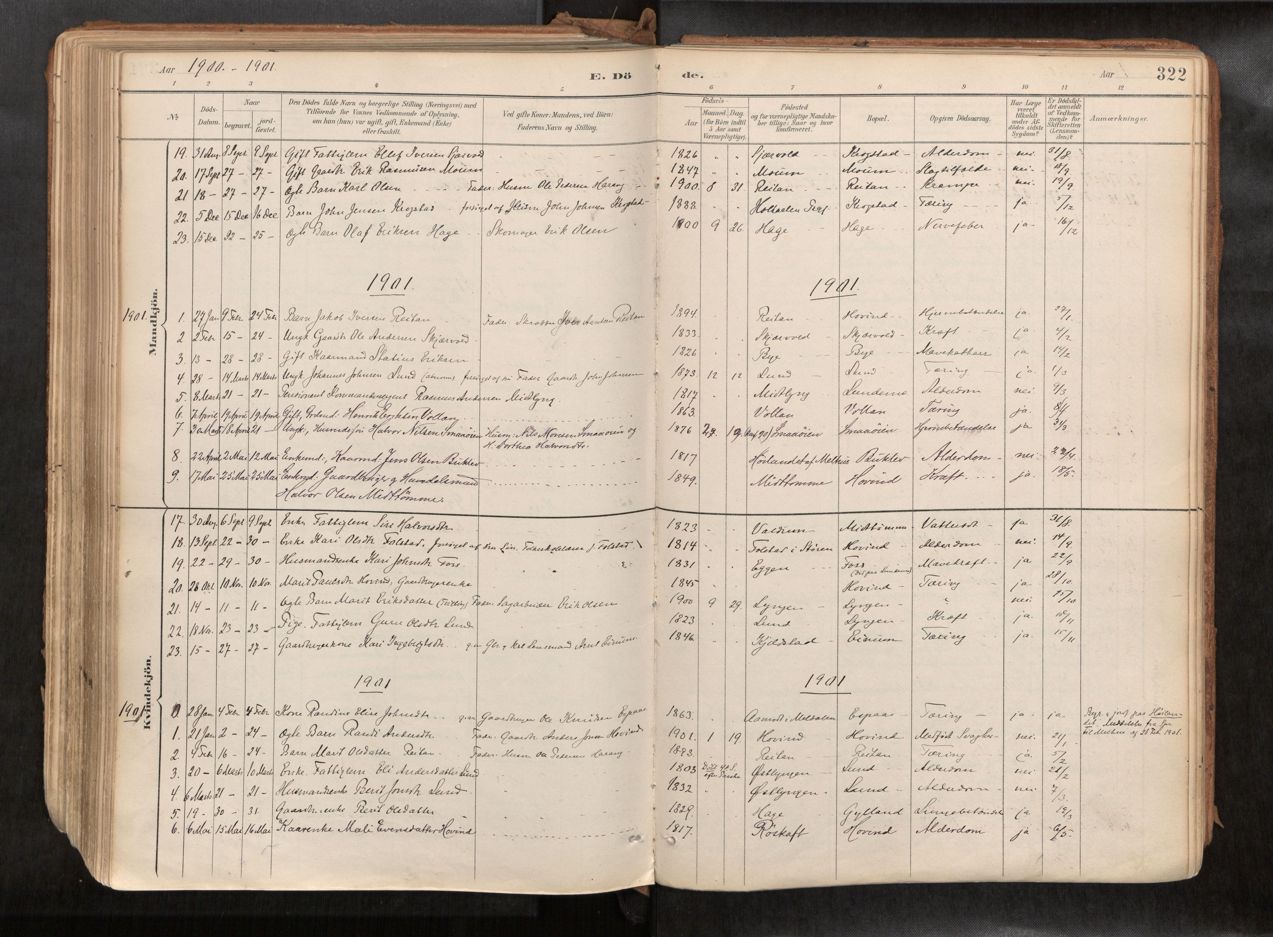 SAT, Ministerialprotokoller, klokkerbøker og fødselsregistre - Sør-Trøndelag, 692/L1105b: Ministerialbok nr. 692A06, 1891-1934, s. 322