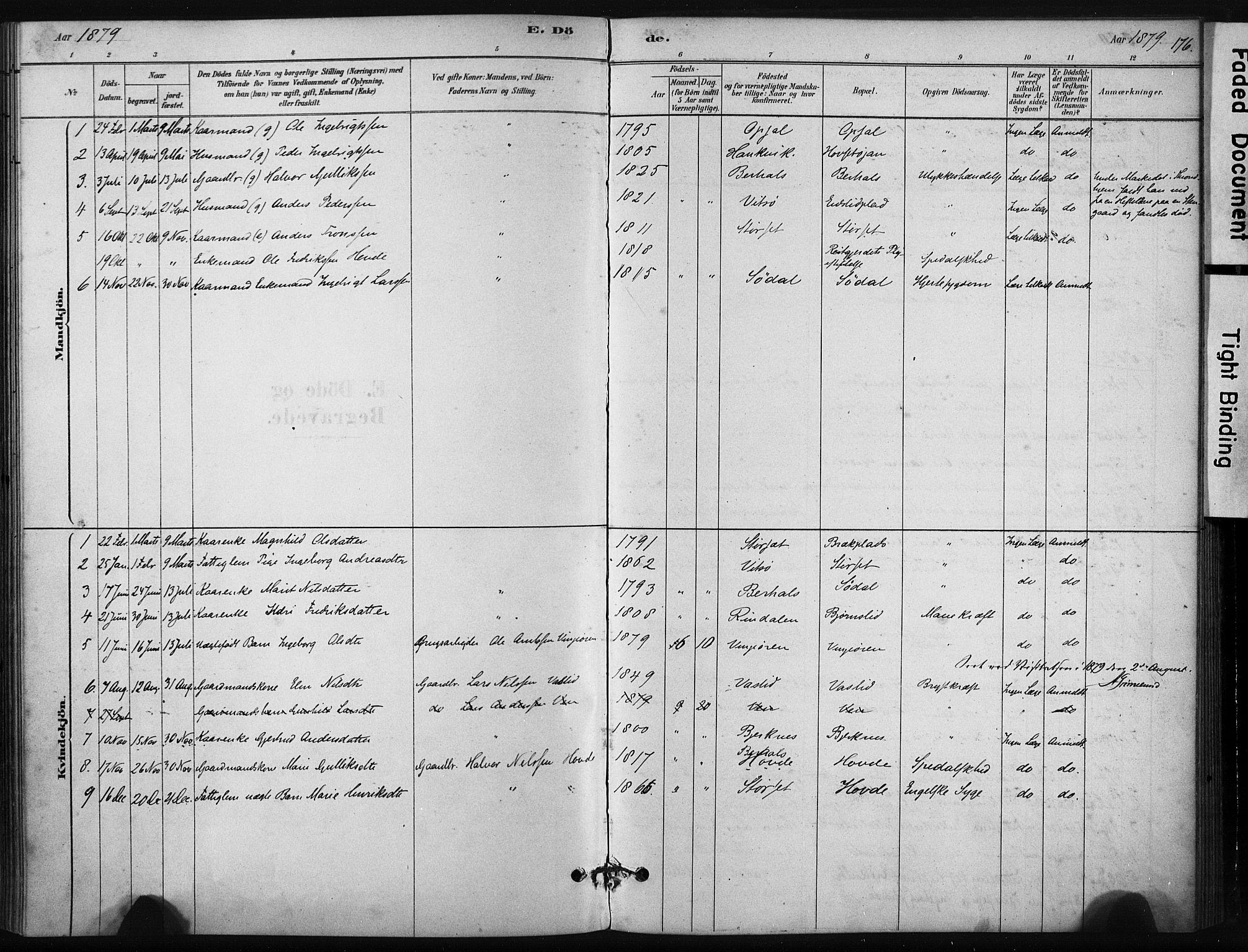 SAT, Ministerialprotokoller, klokkerbøker og fødselsregistre - Sør-Trøndelag, 631/L0512: Ministerialbok nr. 631A01, 1879-1912, s. 176