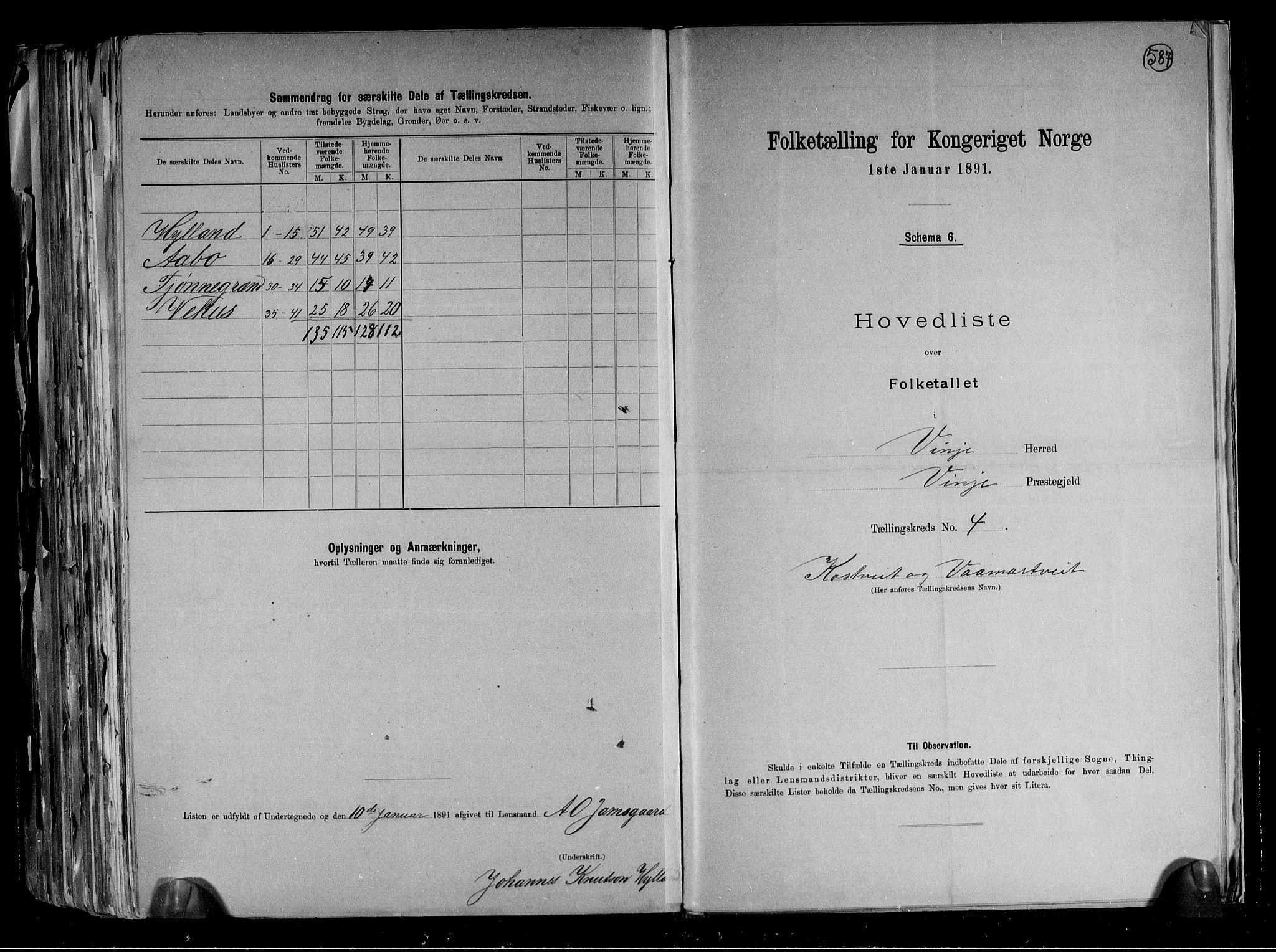 RA, Folketelling 1891 for 0834 Vinje herred, 1891, s. 10
