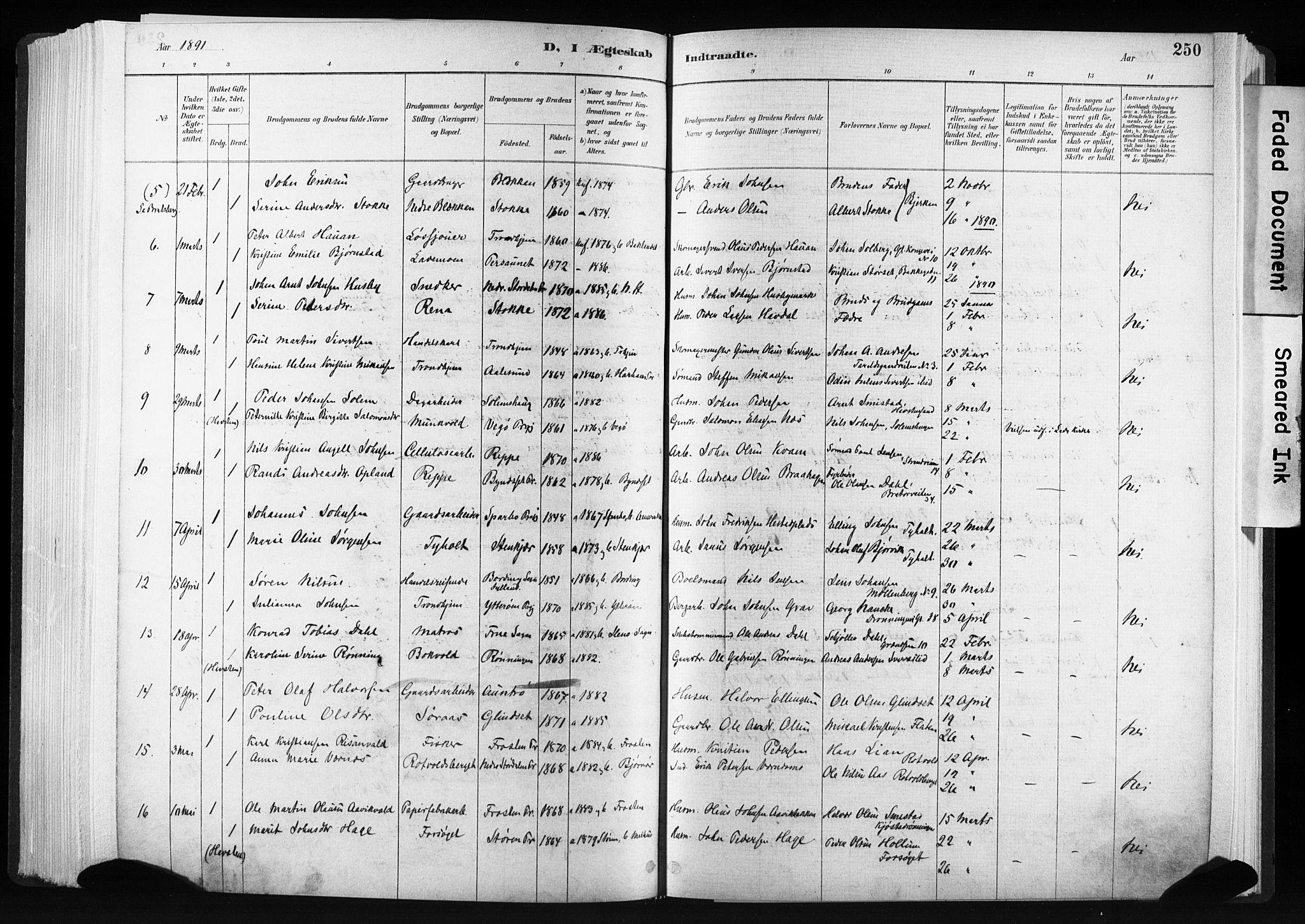 SAT, Ministerialprotokoller, klokkerbøker og fødselsregistre - Sør-Trøndelag, 606/L0300: Ministerialbok nr. 606A15, 1886-1893, s. 250