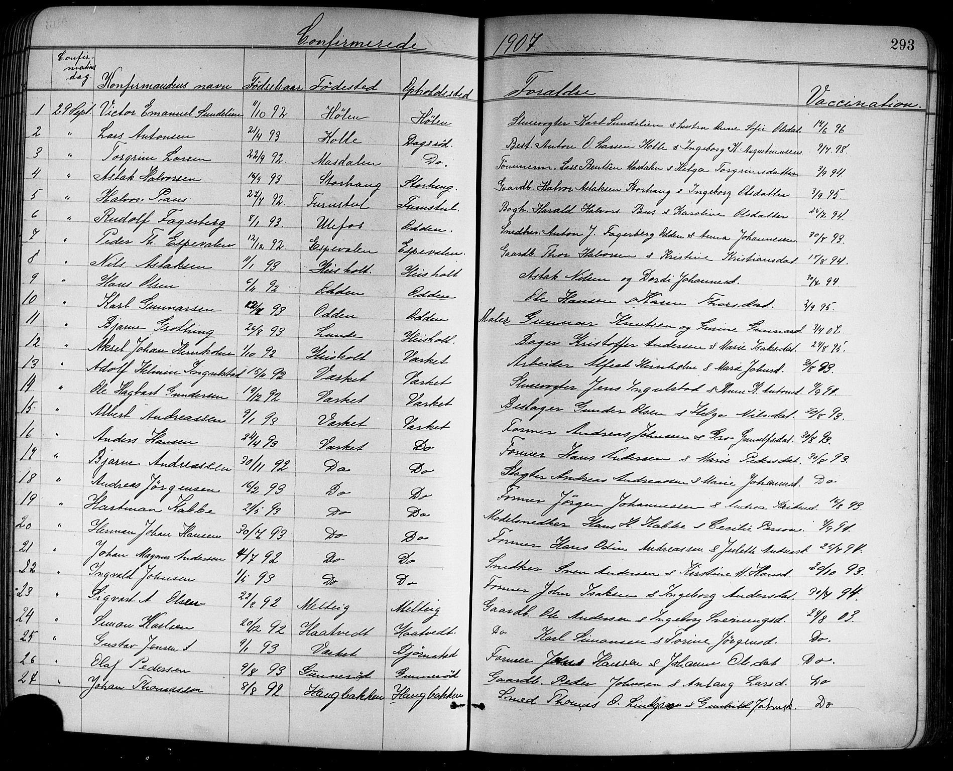 SAKO, Holla kirkebøker, G/Ga/L0005: Klokkerbok nr. I 5, 1891-1917, s. 293