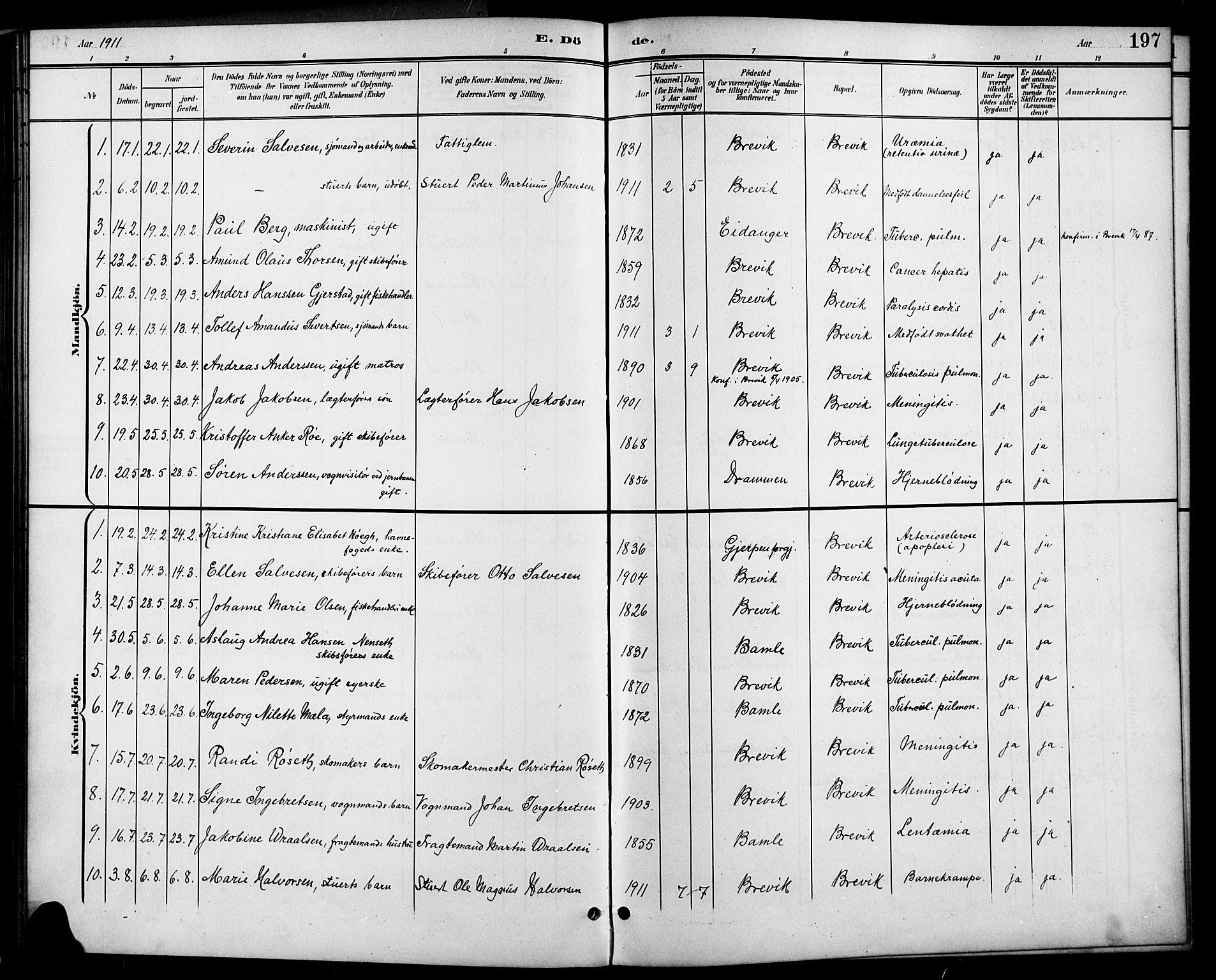 SAKO, Brevik kirkebøker, G/Ga/L0005: Klokkerbok nr. 5, 1901-1924, s. 197