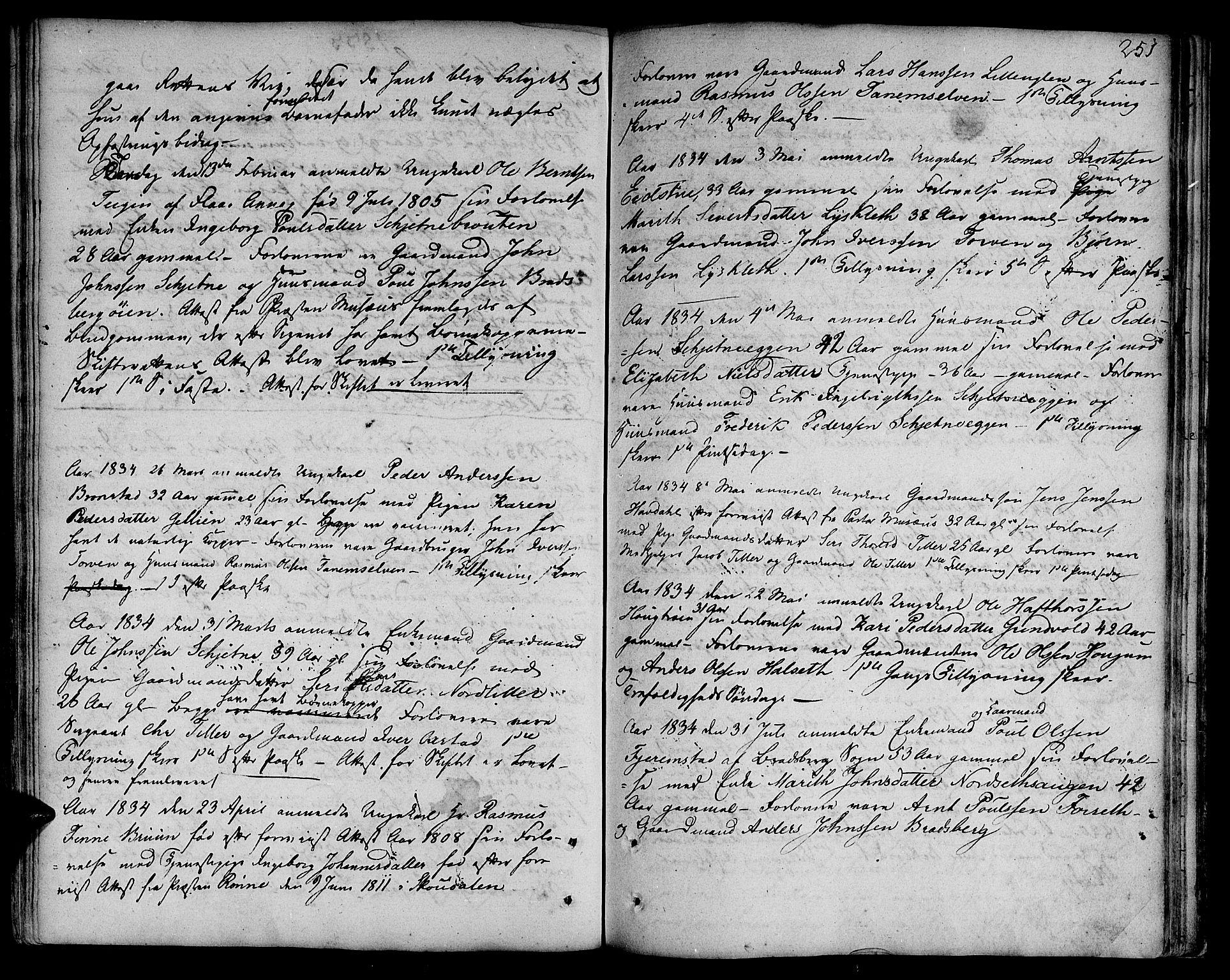 SAT, Ministerialprotokoller, klokkerbøker og fødselsregistre - Sør-Trøndelag, 618/L0438: Ministerialbok nr. 618A03, 1783-1815, s. 251
