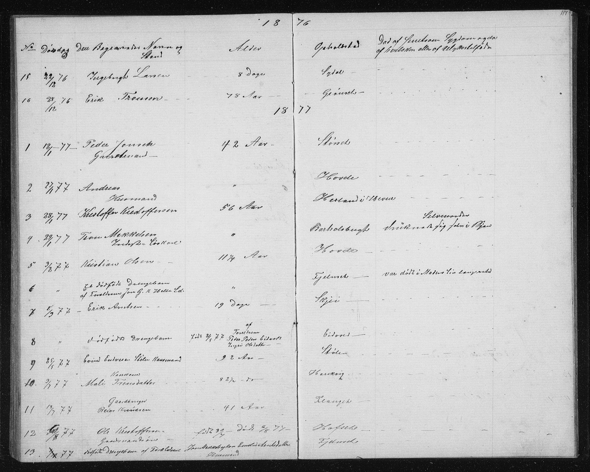 SAT, Ministerialprotokoller, klokkerbøker og fødselsregistre - Sør-Trøndelag, 631/L0513: Klokkerbok nr. 631C01, 1869-1879, s. 117
