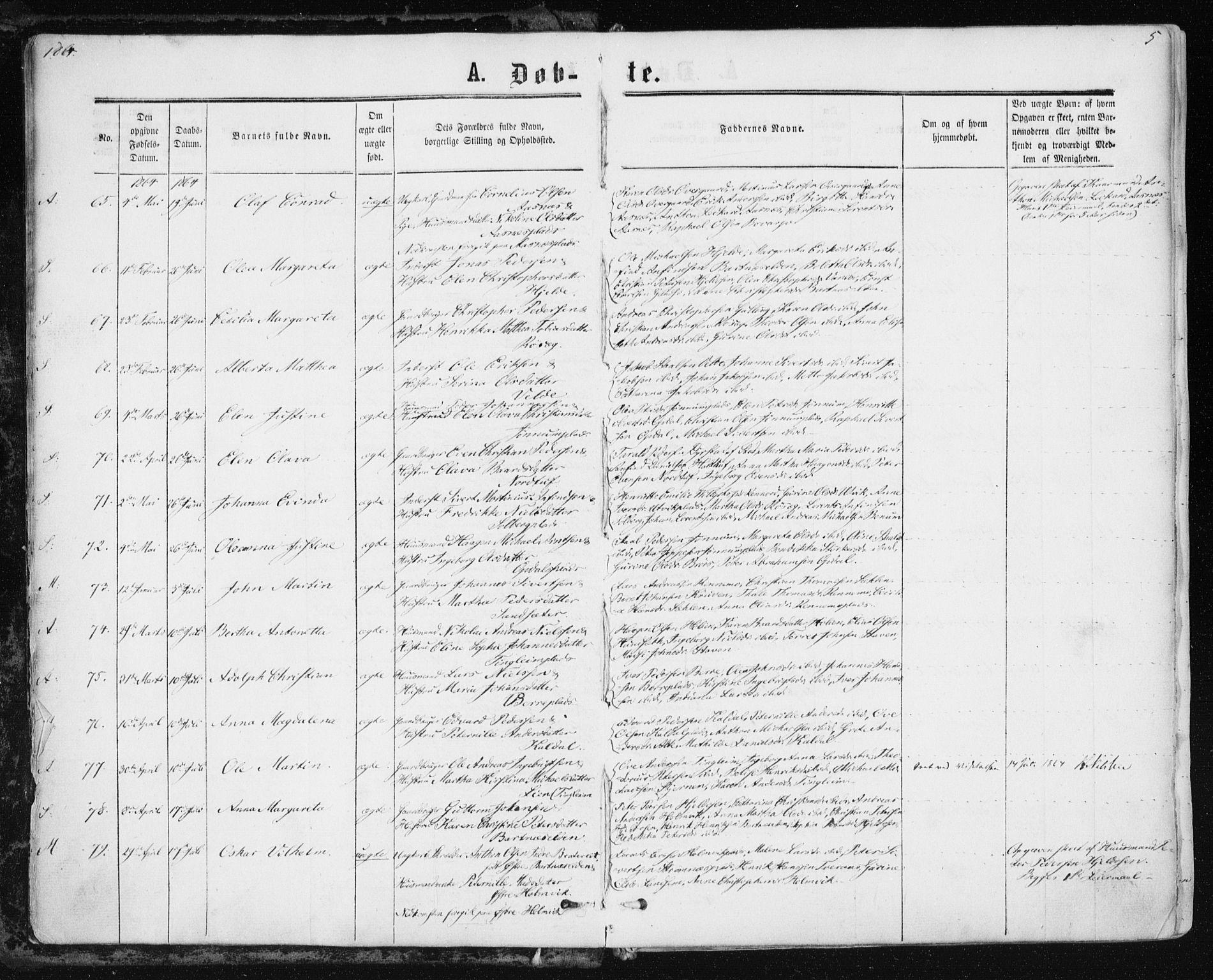 SAT, Ministerialprotokoller, klokkerbøker og fødselsregistre - Nord-Trøndelag, 741/L0394: Ministerialbok nr. 741A08, 1864-1877, s. 5